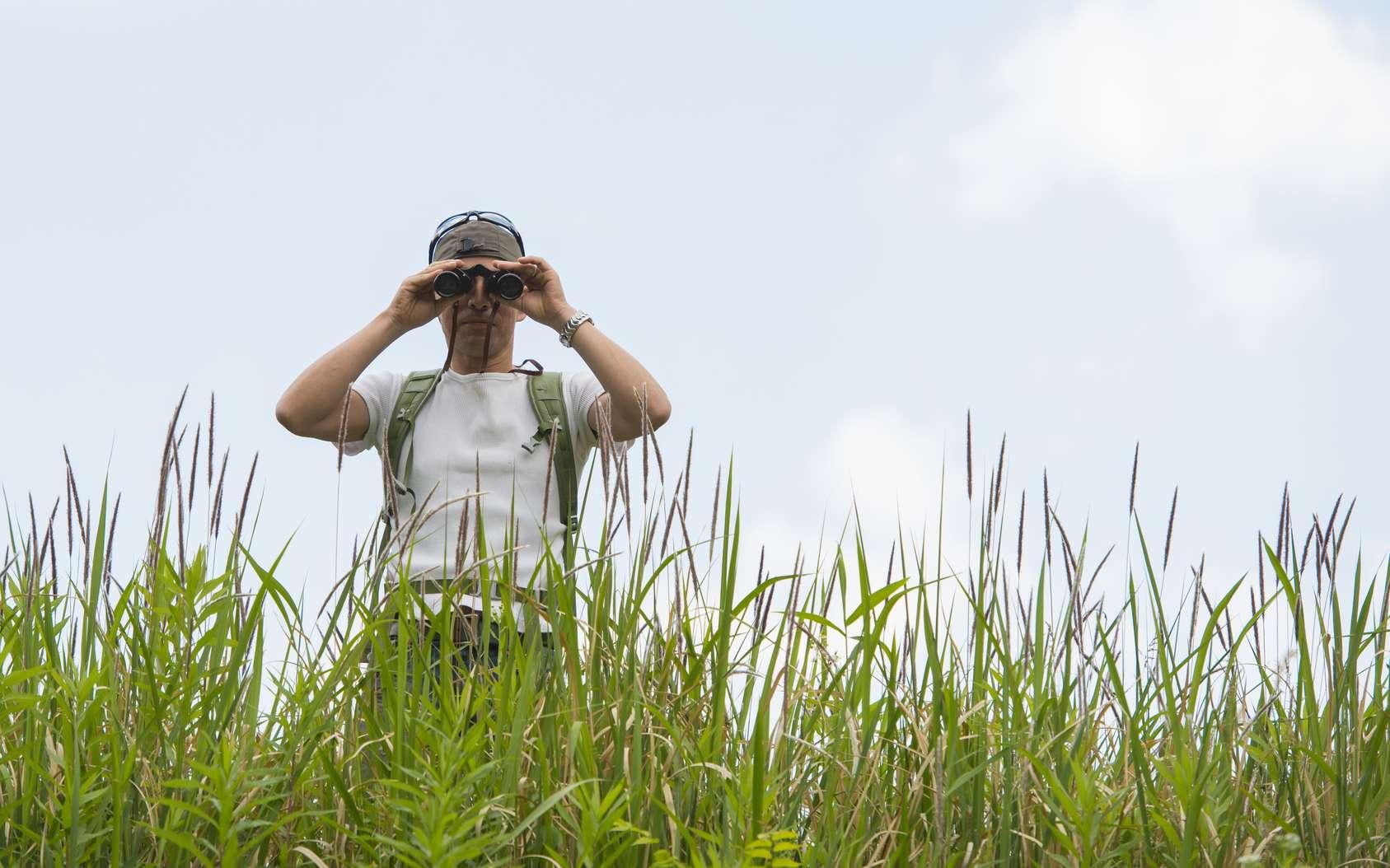 L'observateur de la nature l'admire par plaisir mais il peut aussi aider la science. © hakase420, Fotolia