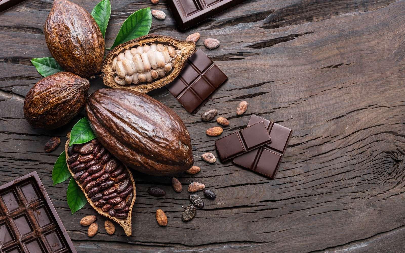 Nestlé invente un chocolat sans sucre avec des déchets de cacao