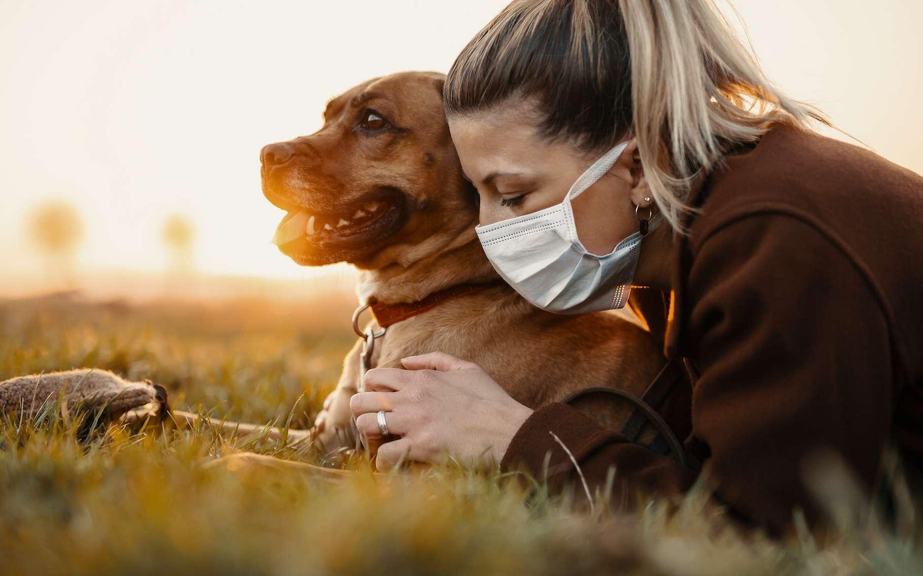 Selon une étude publiée par des chercheurs de l'Institut Pasteur, chiens et chats seraient épargnés par le Covid-19. © MT-R, Adobe Stock