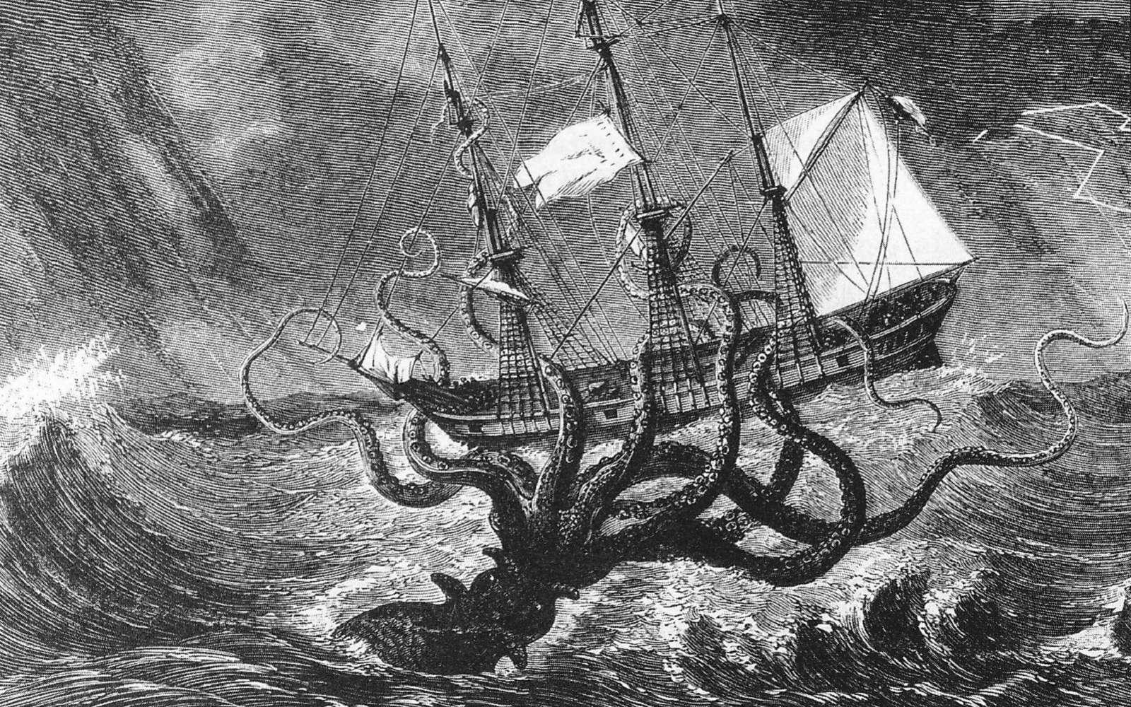Le Kraken, pas si légendaire que ça ? © Mary Evans, Sipa