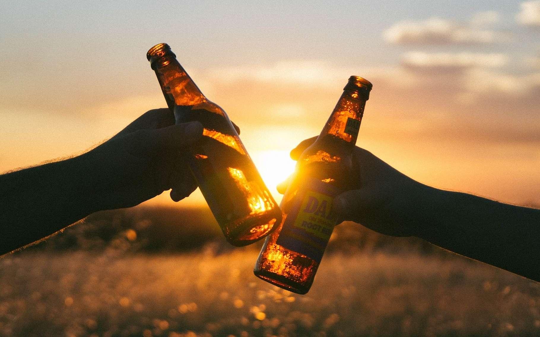 Des archéologues de l'université de Stanford ont découvert en Israël les plus anciennes traces de brassage de bière. Vieilles de quelque 13.000 ans, elles pourraient venir accréditer la thèse qui veut que la soif de bière ait été l'un des déclencheurs de la culture des céréales. © Free-Photos, Pixabay, CC0 Creative Commons