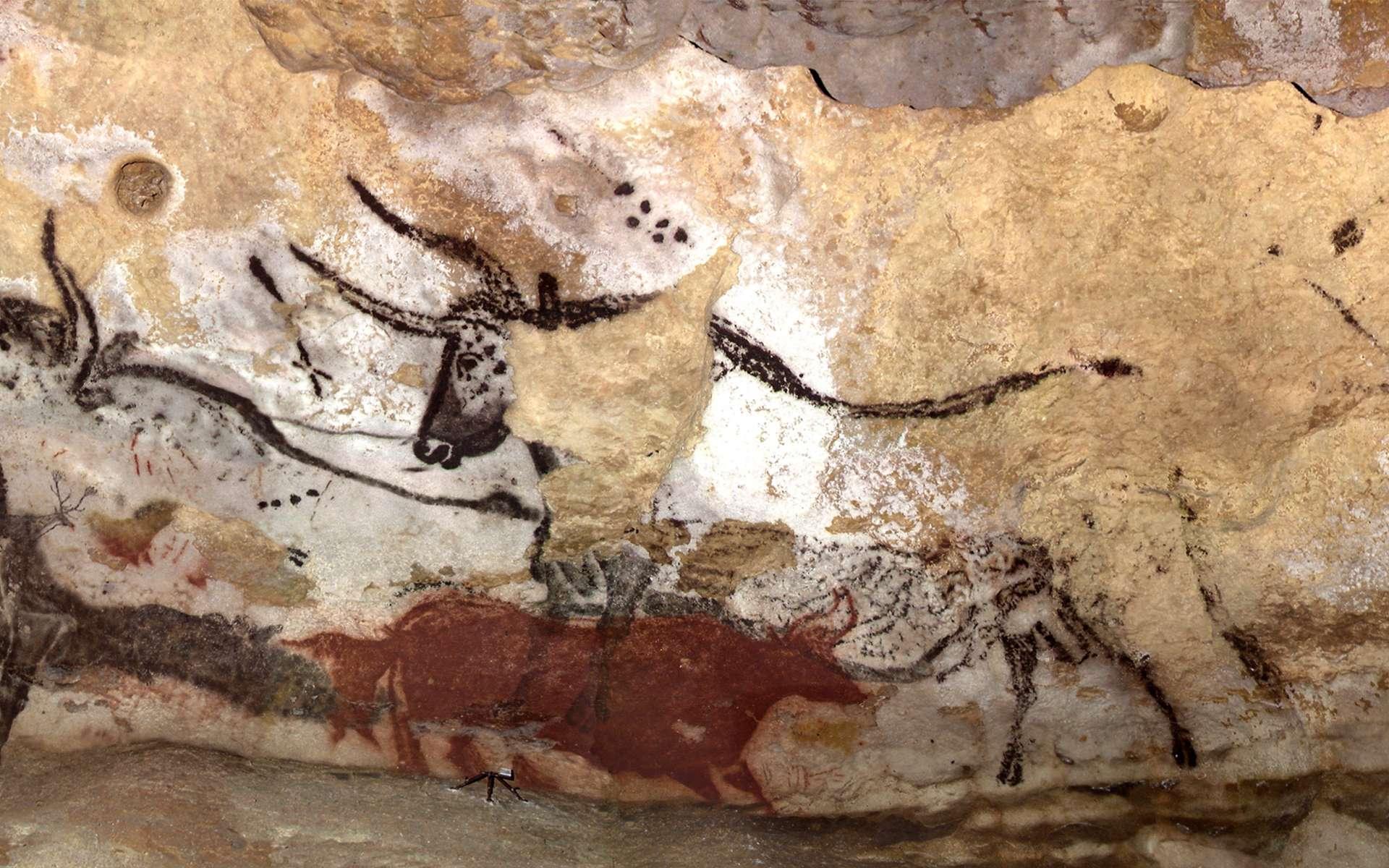 La visite des grottes de Lascaux est en réalité une visite de reproduction, car Lascaux I a été endommagé par le tourisme de masse. © Tractatus, Flickr, CC by-nc-sa 2.0