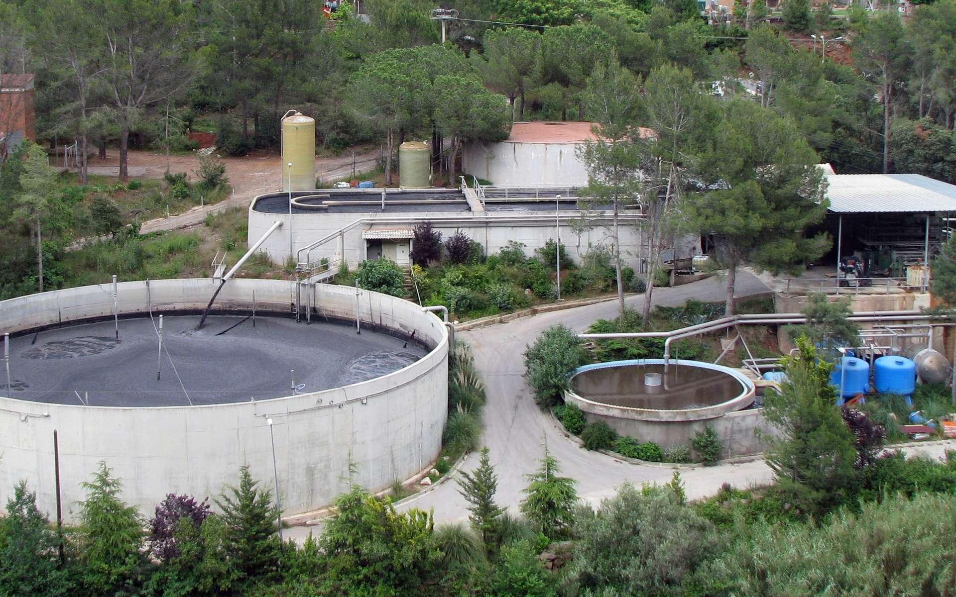 Avant d'être rejetées, les eaux usées sont traitées dans des cuves (à l'image, à Castellar del Vallès, en Espagne). © Xavigivax, cc by sa 3.0