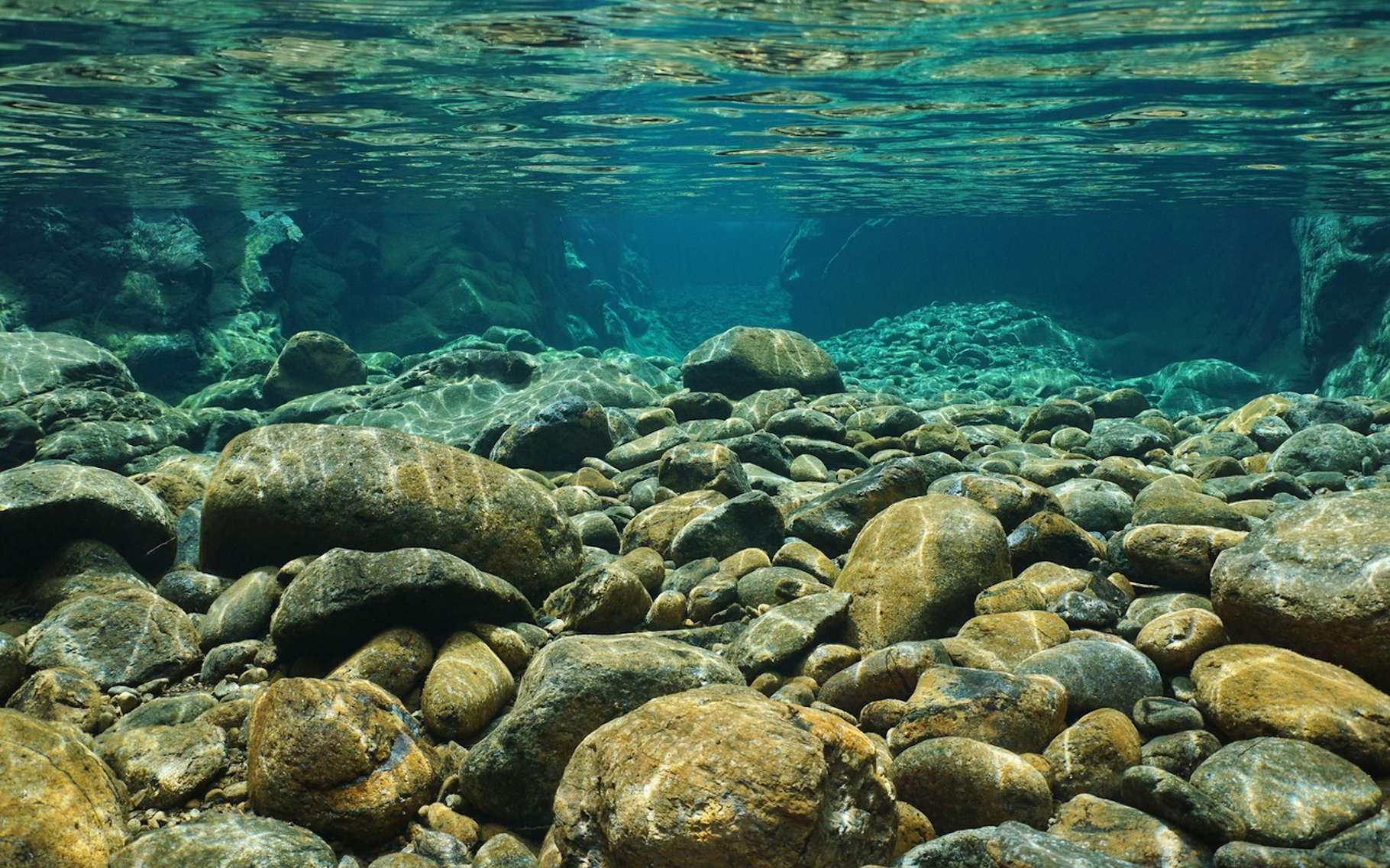 Des chercheurs ont découvert un mollusque qui mange les cailloux des rivières et excrète du sable. © damedias, Fotolia