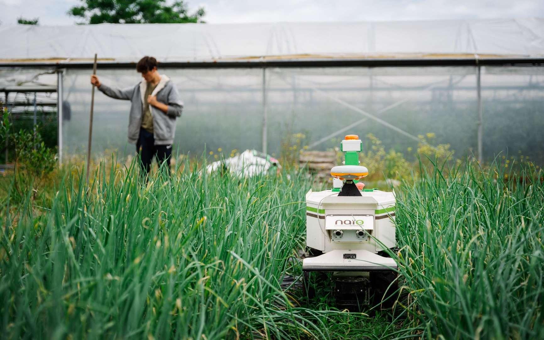 La gestion des tâches agricoles se modernise. © Naïo Technologies