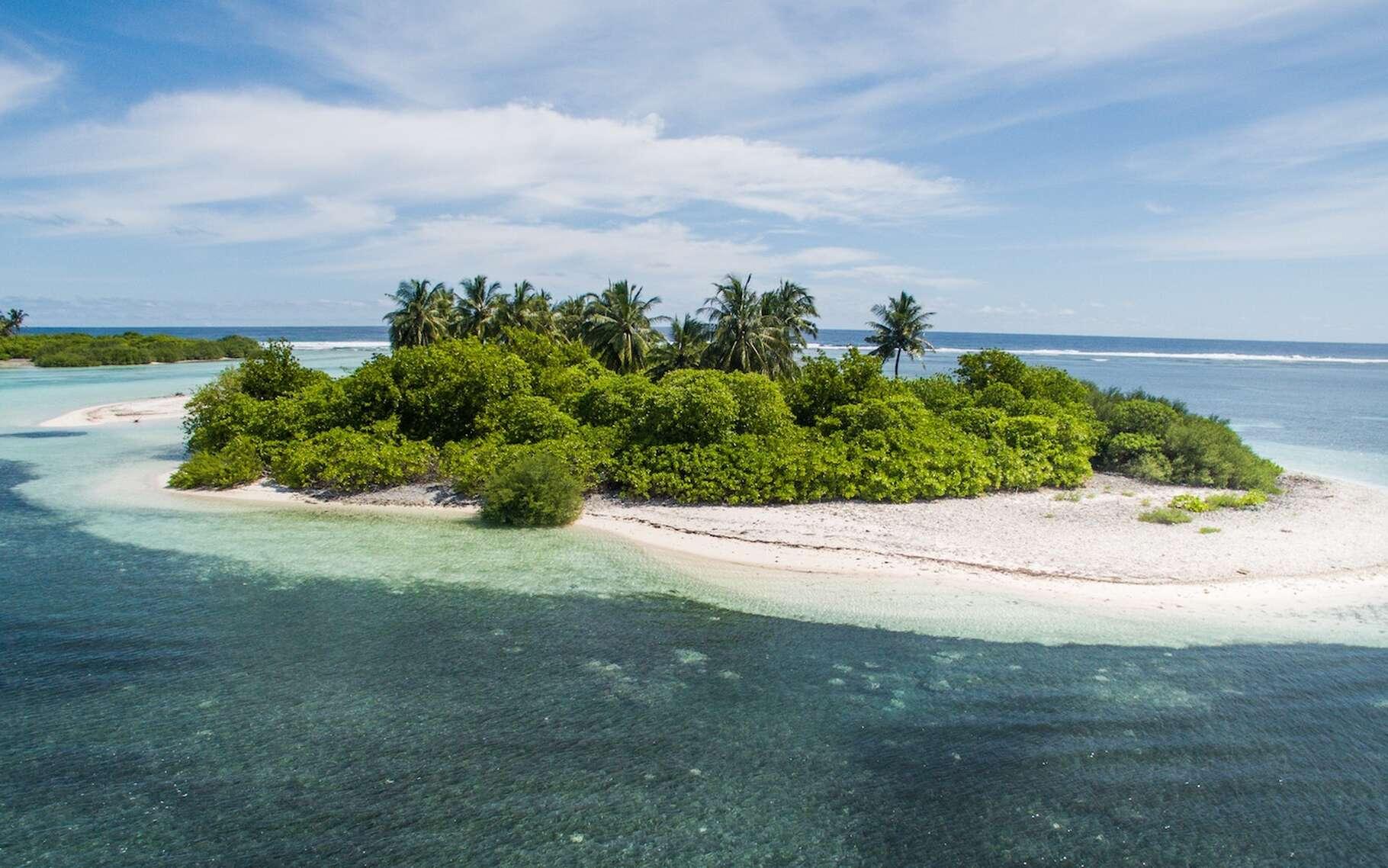 Il existerait sur Terre pas moins de 300.000 îles de tailles et de caractéristiques variées. Mais laquelle est la plus grande? © Aishath Naj, Unsplash