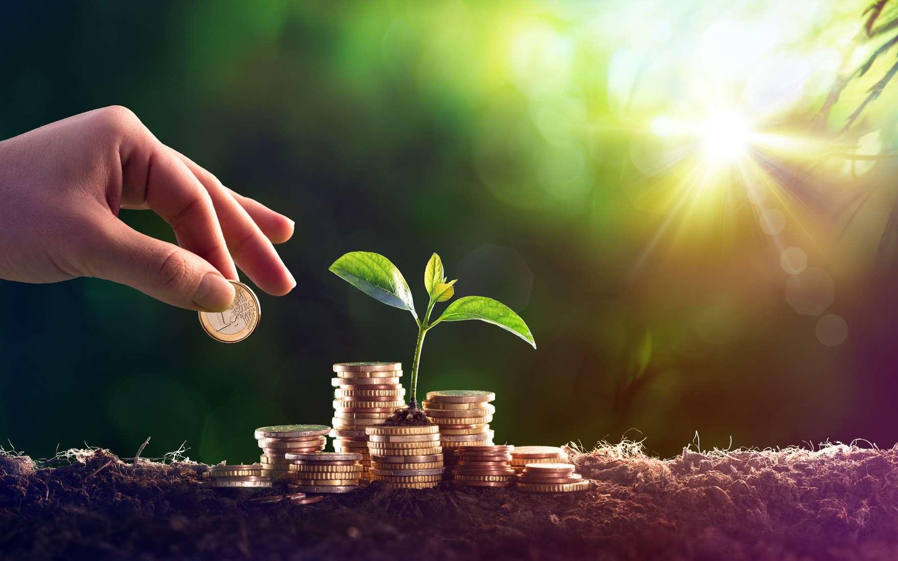 Face aux enjeux du réchauffement climatique et de la pollution, certains investisseurs font le choix de soutenir les entreprises responsables ou celles qui font les démarches pour le devenir. © Romolo Tavani, Fotolia