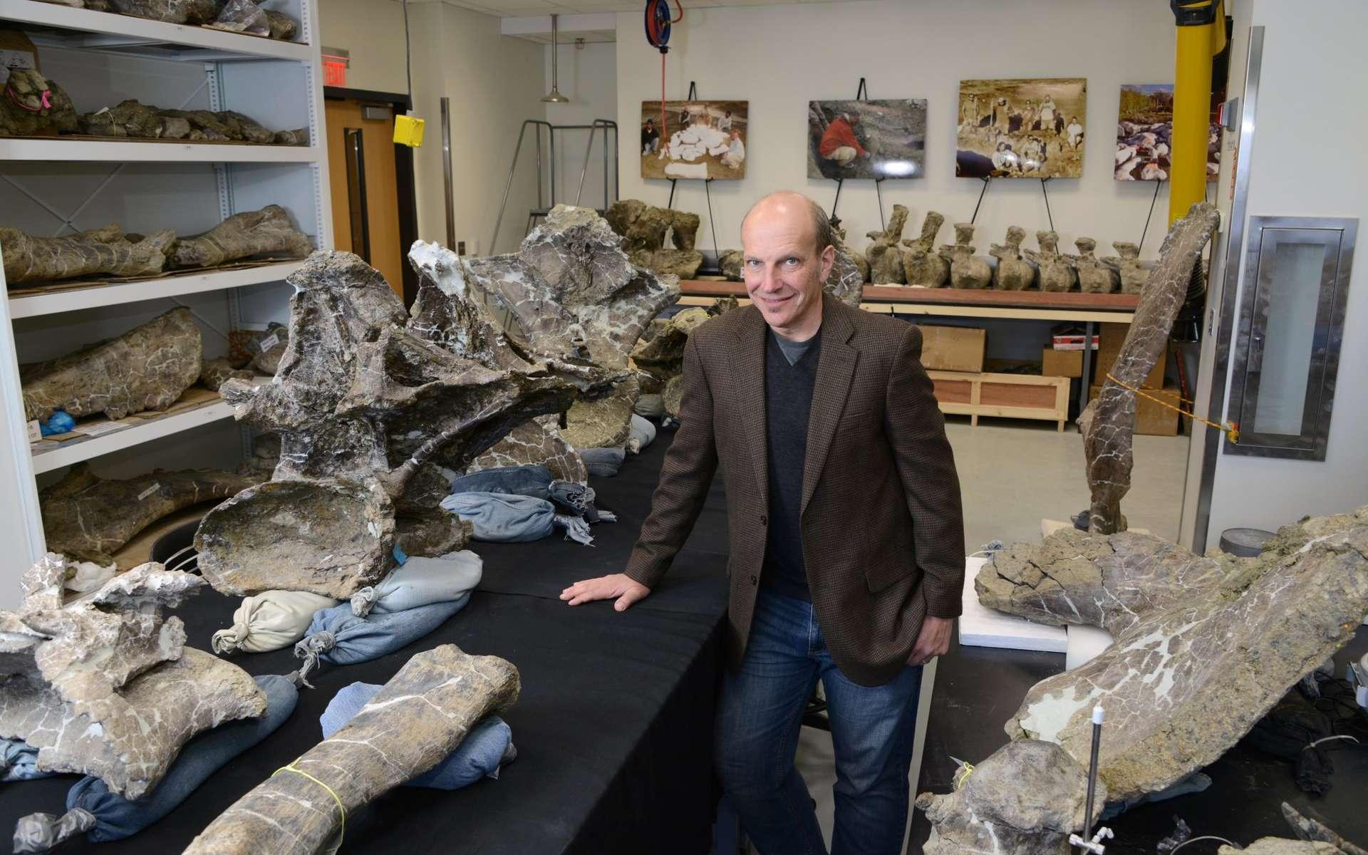 Kenneth Lacovara, membre de l'équipe, pose à côté de vertèbres dorsales appartenant à Dreadnoughtus schrani. D'autres éléments du squelette, dont la queue (au fond), sont installés autour de lui. © Drexel University