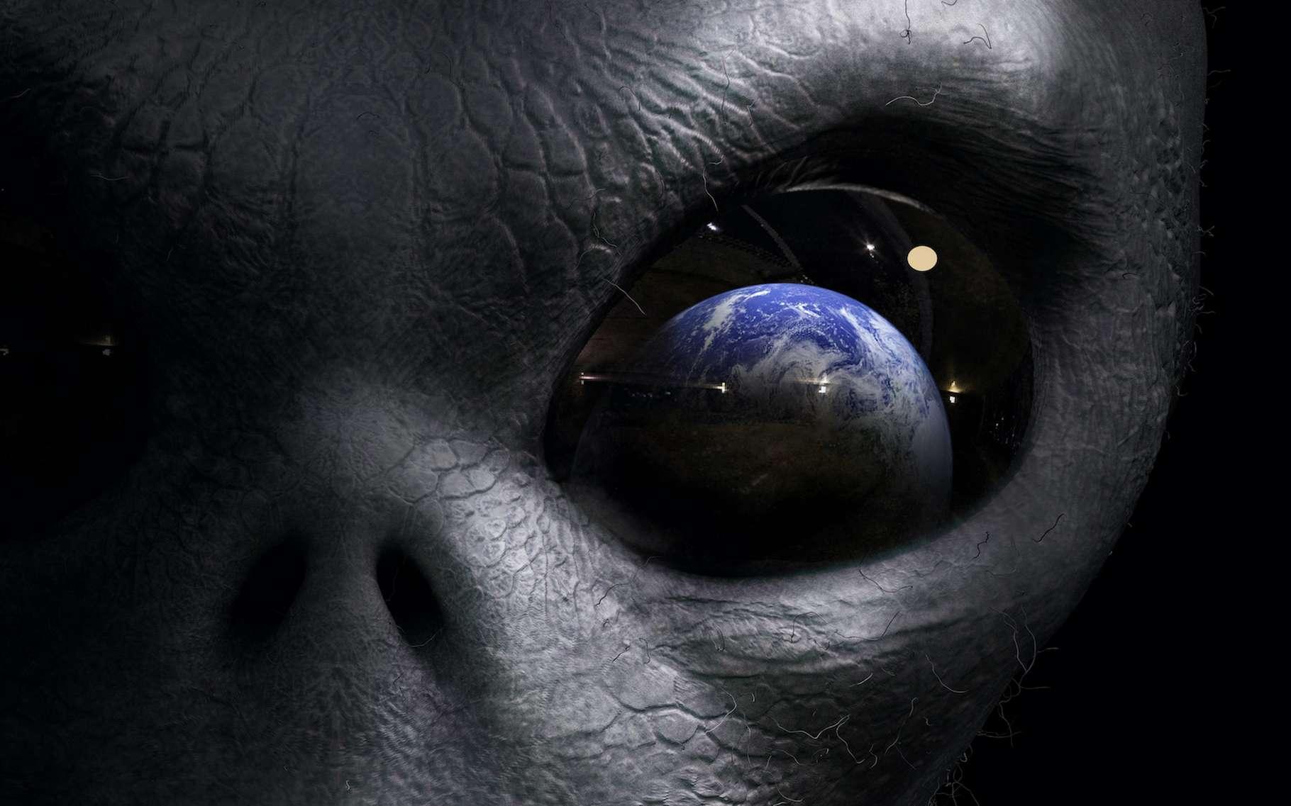 Les scientifiques impliqués dans le projet Mermoz — pour Monitoring plaEtary SuRfaces with Modern pOlarimetric characteriZation — cherchent à savoir si la vie sur Terre peut être détectée depuis l'espace. Ils pensent aujourd'hui avoir fait un grand pas en ce sens. © adimas, Adobe Stock