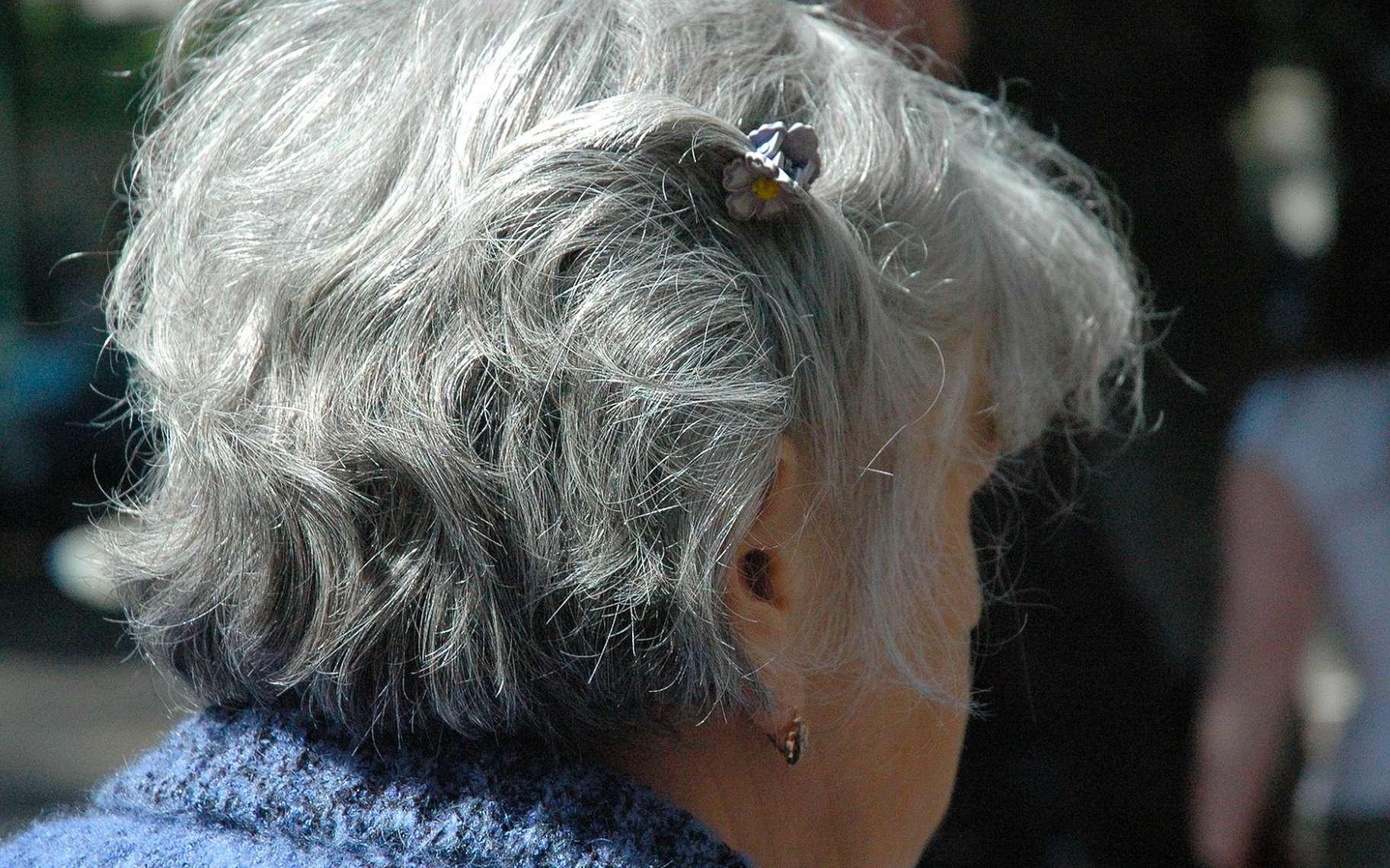 Le cerveau des personnes âgées adopte de nouvelles stratégies pour mobiliser la mémoire. © Julim6, Pixabay