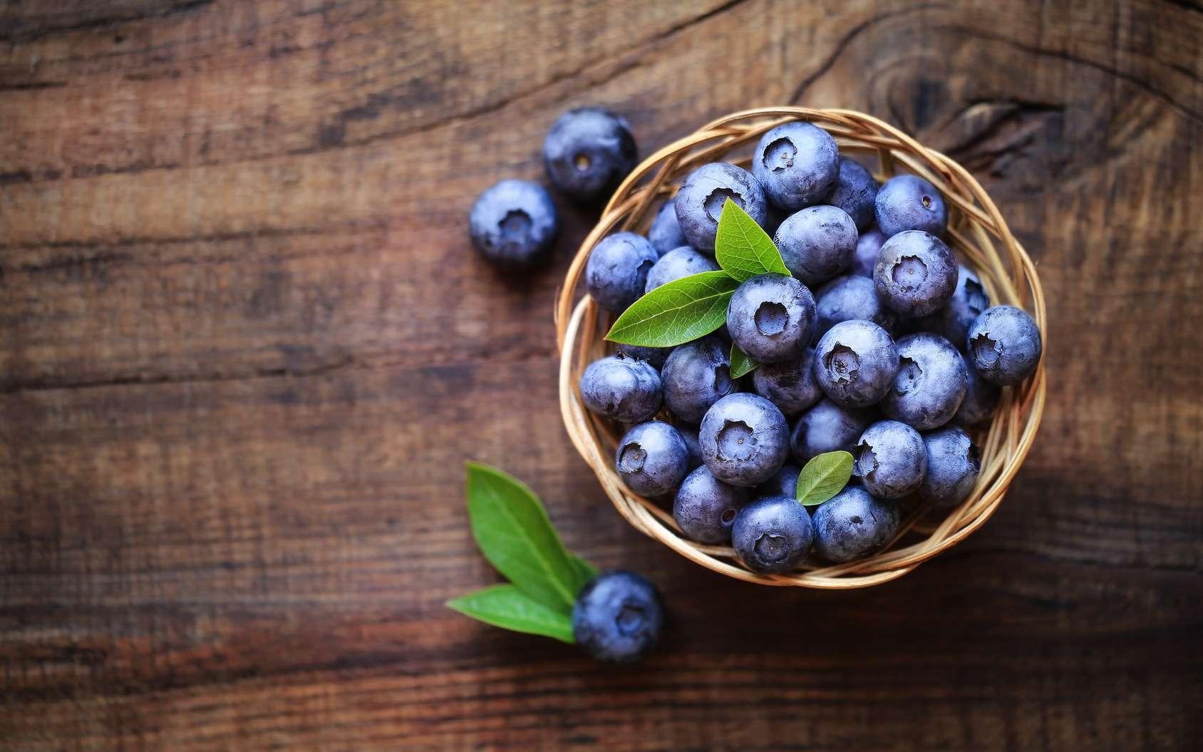 Quelles sont les vertus de la myrtille ? Ces baies bleues contiennent des molécules aux multiples bienfaits. © kuvona, Fotolia