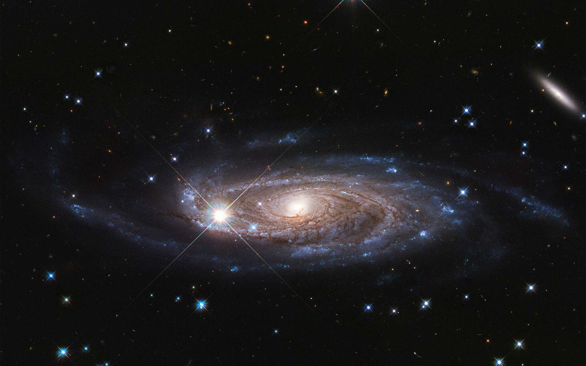La Galaxie UGC 2885 est peut-être la plus grande de l'univers local. Elle est 2,5 fois plus large que notre Voie lactée et contient 10 fois plus d'étoiles. Cette galaxie est à 232 millions d'années-lumière, située dans la constellation nord de Persée. L'image a été prise par Hubble. © Nasa, ESA, and B. Holwerda (University of Louisville).