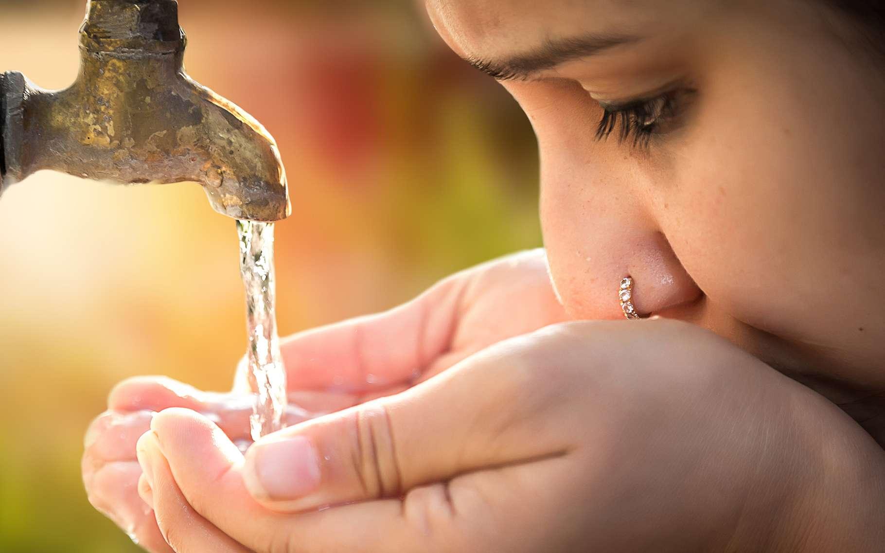 Sur les 145 litres d'eau potable qu'un Français consomme par jour, seul 1 % est bu. © greenaperture, Shutterstock