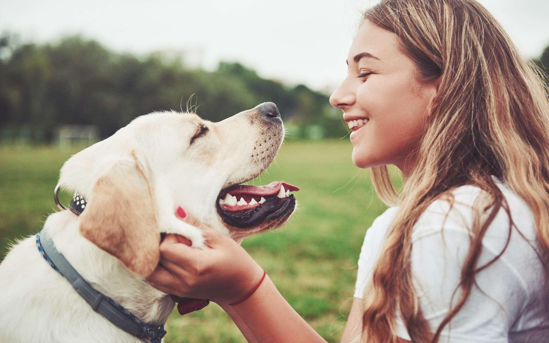 Le chien est l'ami de l'Homme depuis la nuit des temps. Mais pourquoi ? Les scientifiques pensent que c'est à cause de son grand cœur gros. © Standret, Adobe Stock
