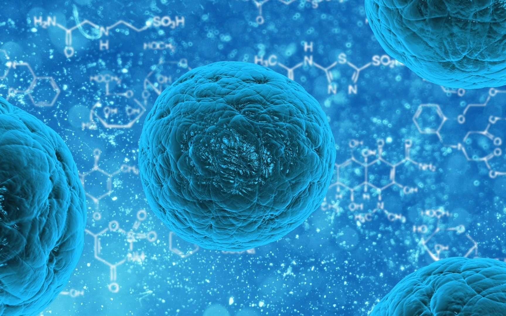 Des chercheurs ont mis au point une cellule artificielle composée d'organites fonctionnels et capables de communiquer, comme le font les vrais. © PublicDomainPictures, Pixabay.com, DP