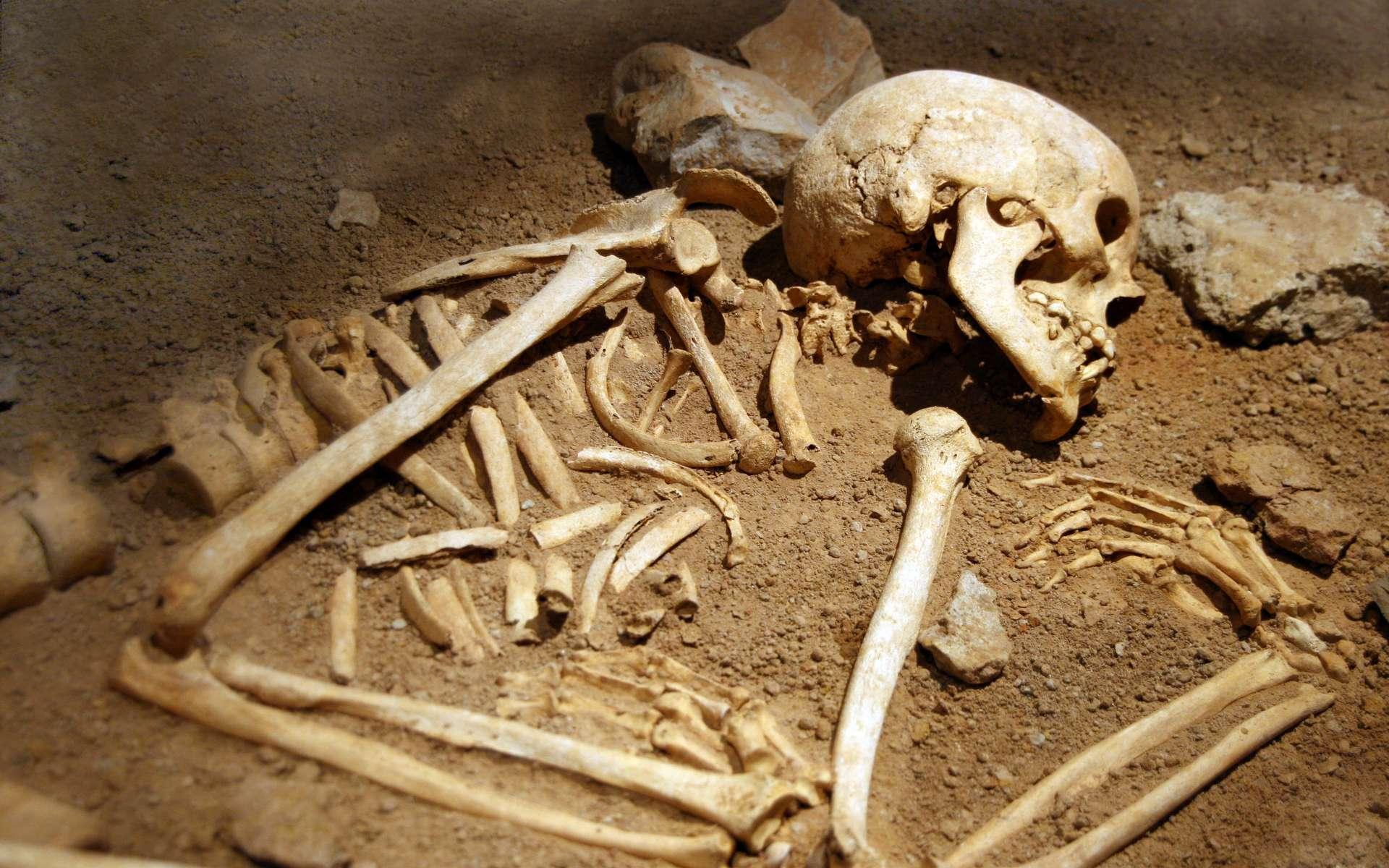 Les squelettes dans les tombes rouvertes au Moyen Âge étaient repositionnés. © tuulimaa, Adobe Stock