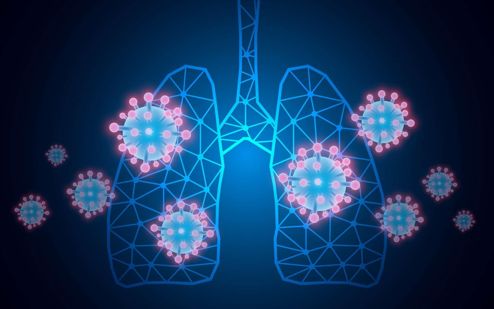 Représentation du SARS-coV-2 dans les poumons. © Suprakrit, Adobe stock