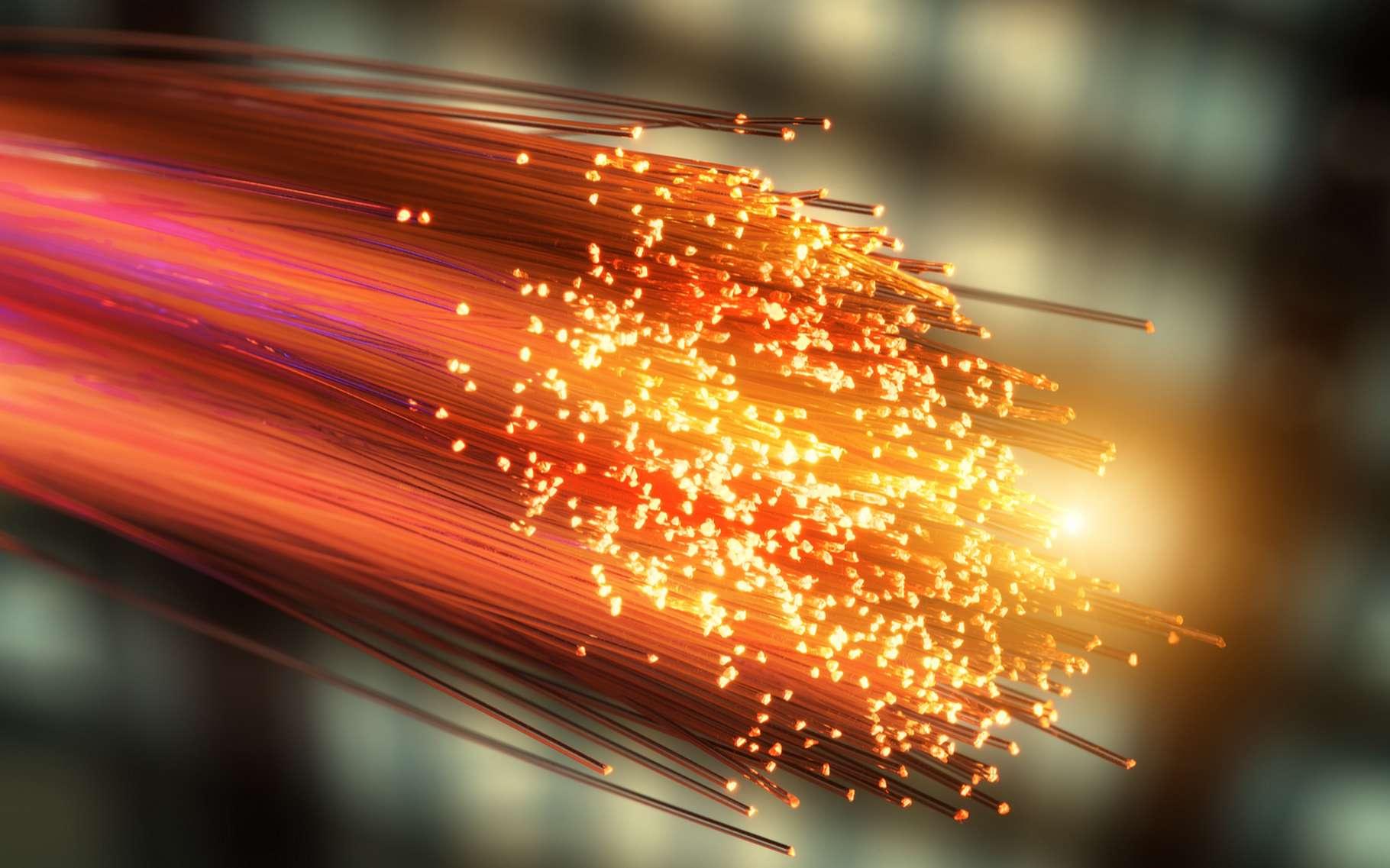 La fibre optique propage des ondes lumineuses entre deux points. © Asharkyu, Shutterstock