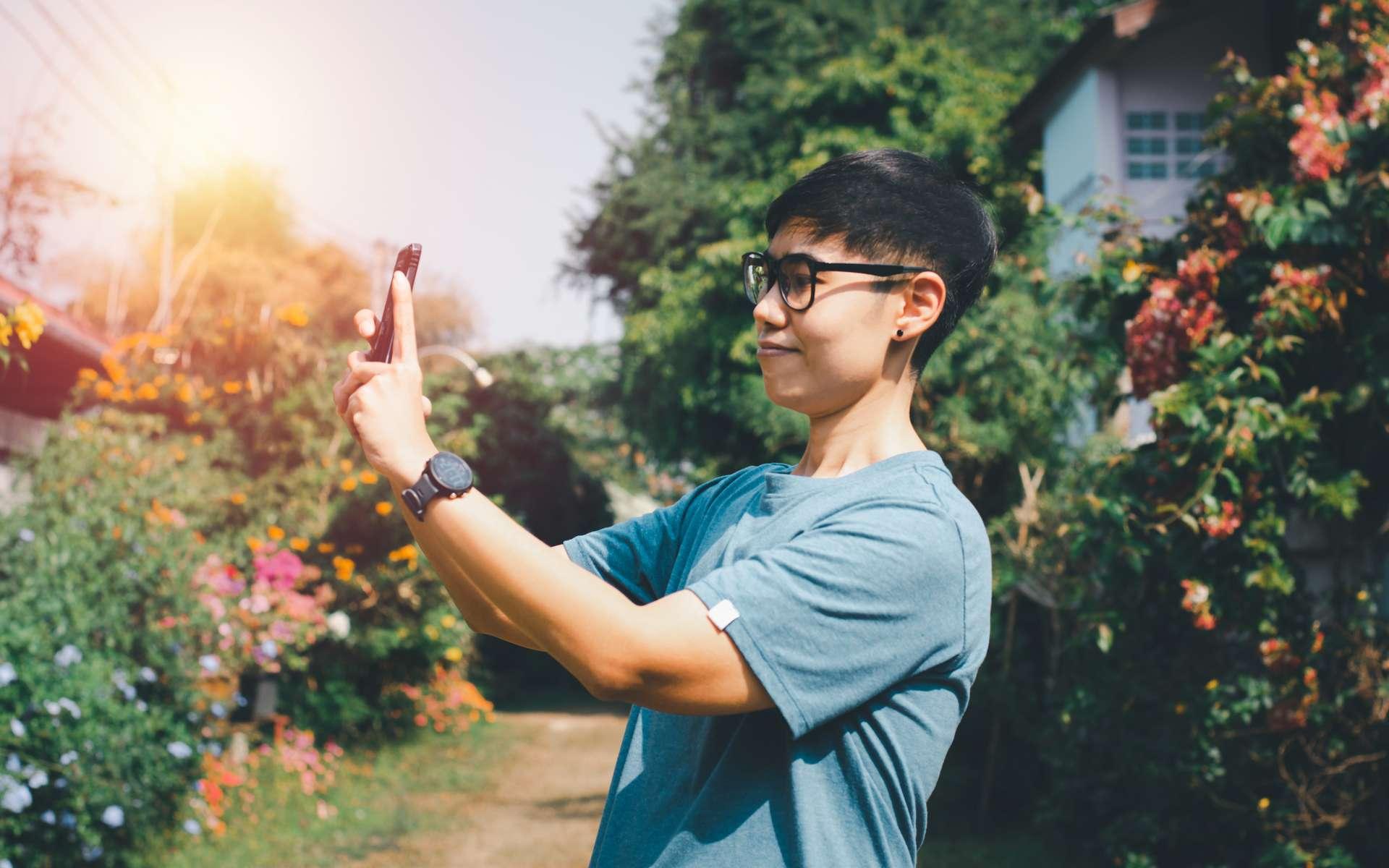 Tomate & Basilic, Groww et Plantsnap : trois applications mobiles pour maîtriser l'art du jardinage. © Nuth, Adobe Stock