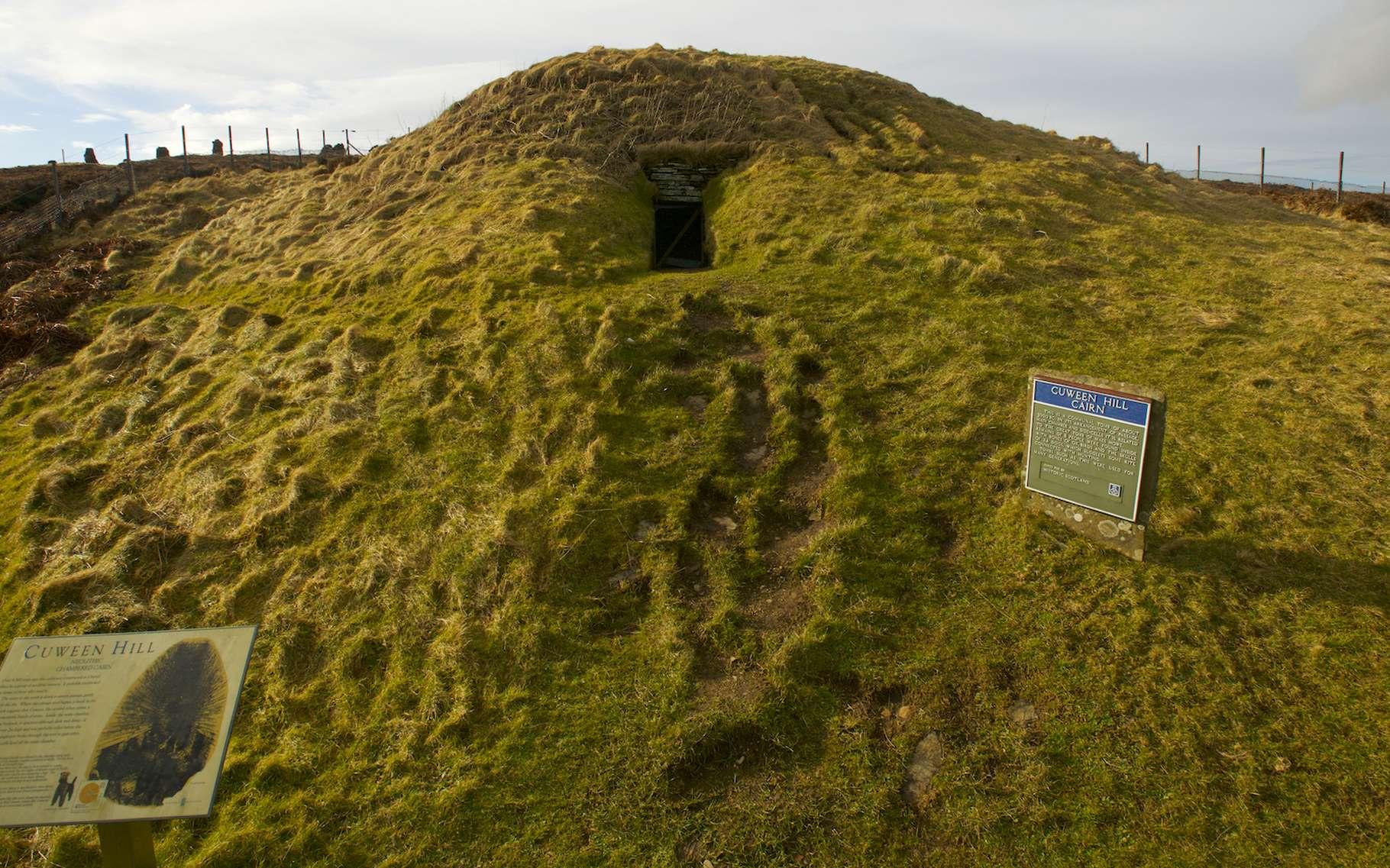 C'est à partir d'un crâne retrouvé sur un site écossais du néolithique que des chercheurs sont parvenus à reconstituer la tête d'un chien. © Historic Environment Scotland