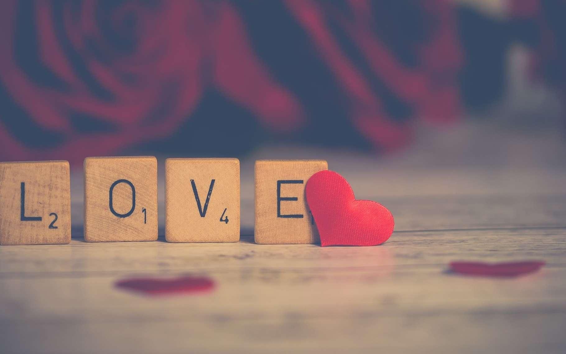 Certains affirment que c'est le 14 février, jour de la Saint-Valentin, que la saison des amours débute chez les oiseaux… © Nietjuh, Pixabay, CC0 Creative Commons