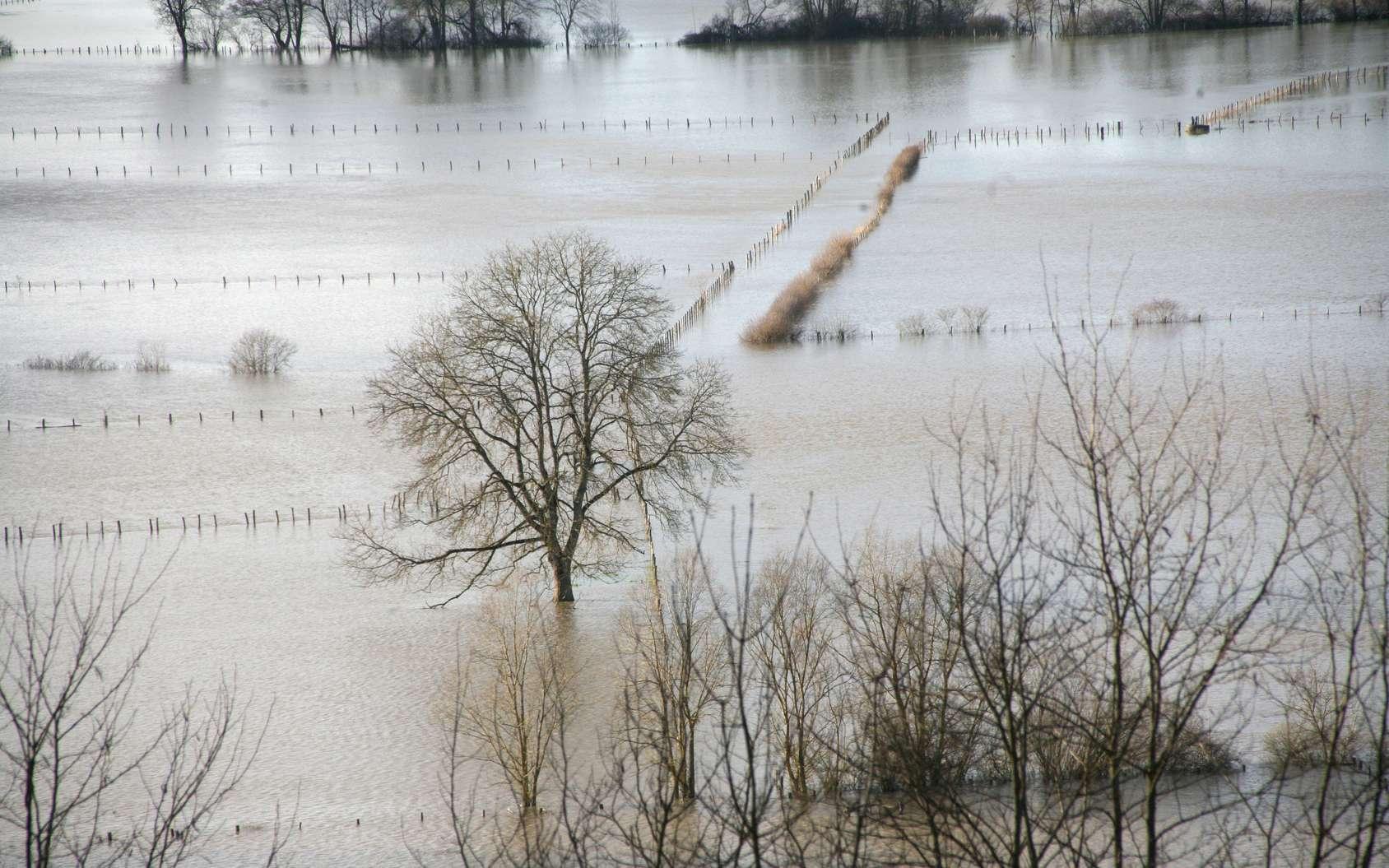 Les changements dans la saisonnalité des crues peuvent profondément affecter les rendements agricoles, la sécurité des infrastructures et la production hydroélectrique ainsi que l'alimentation en eau, soulignent des experts britanniques dans un édito de Science. © Montferney, fotolia