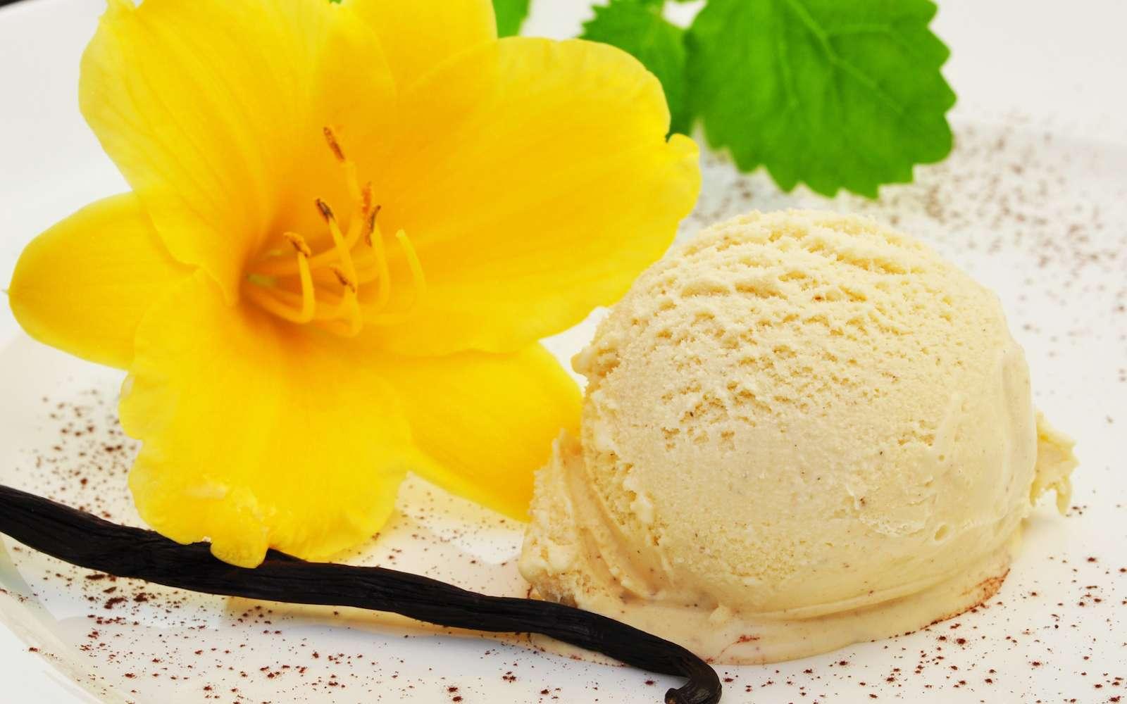 La vanilline est l'arôme le plus utilisé dans l'industrie agroalimentaire. © Printemps, Fotolia