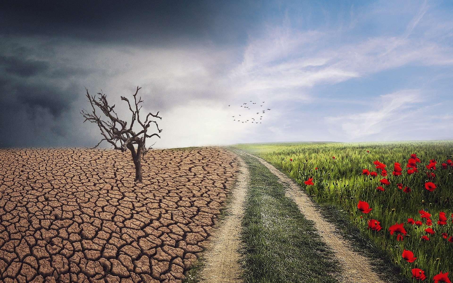 Quels enseignements tirer de la crise du coronavirus pour le changement climatique ? © Enriquelopezgarre, Pixabay, DP