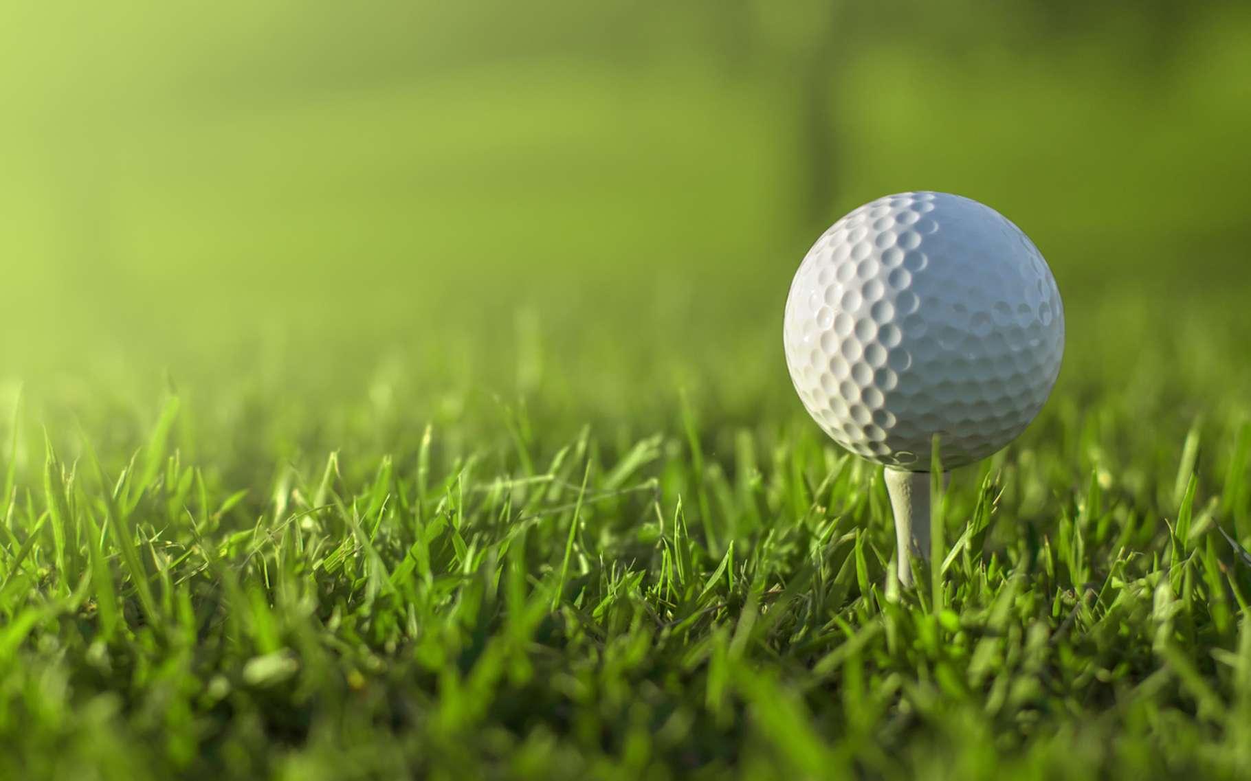 432! C'est le nombre moyen d'alvéoles que compte une balle de golf. De quoi l'aider à voler plus loin. © artea_art, Fotolia