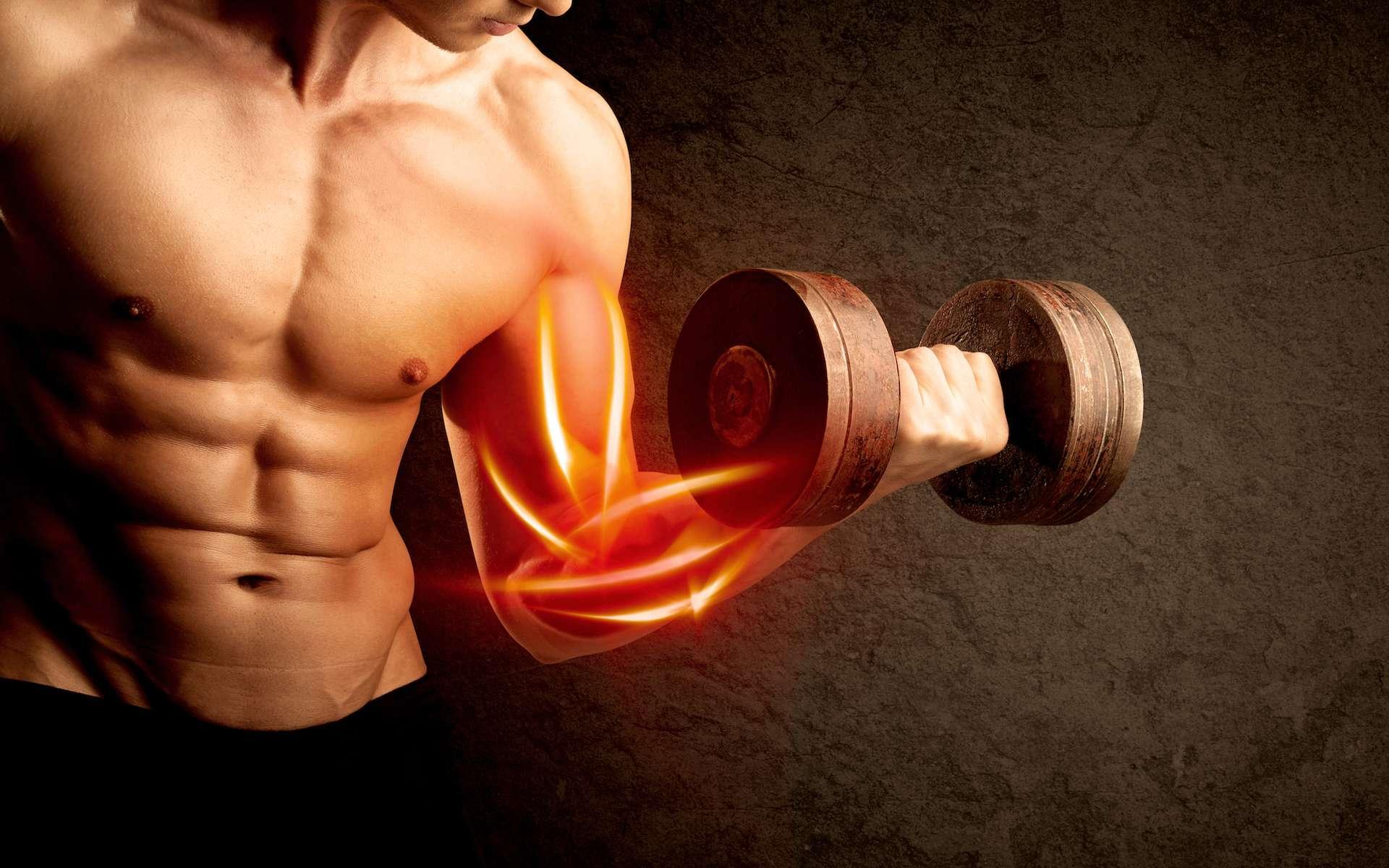 Grâce à un nouveau matériau autocicatrisant incroyablement élastique et répondant à des stimuli électriques, des chimistes de Stanford espèrent faire avancer la recherche sur les muscles artificiels. © r2studio, Shutterstock