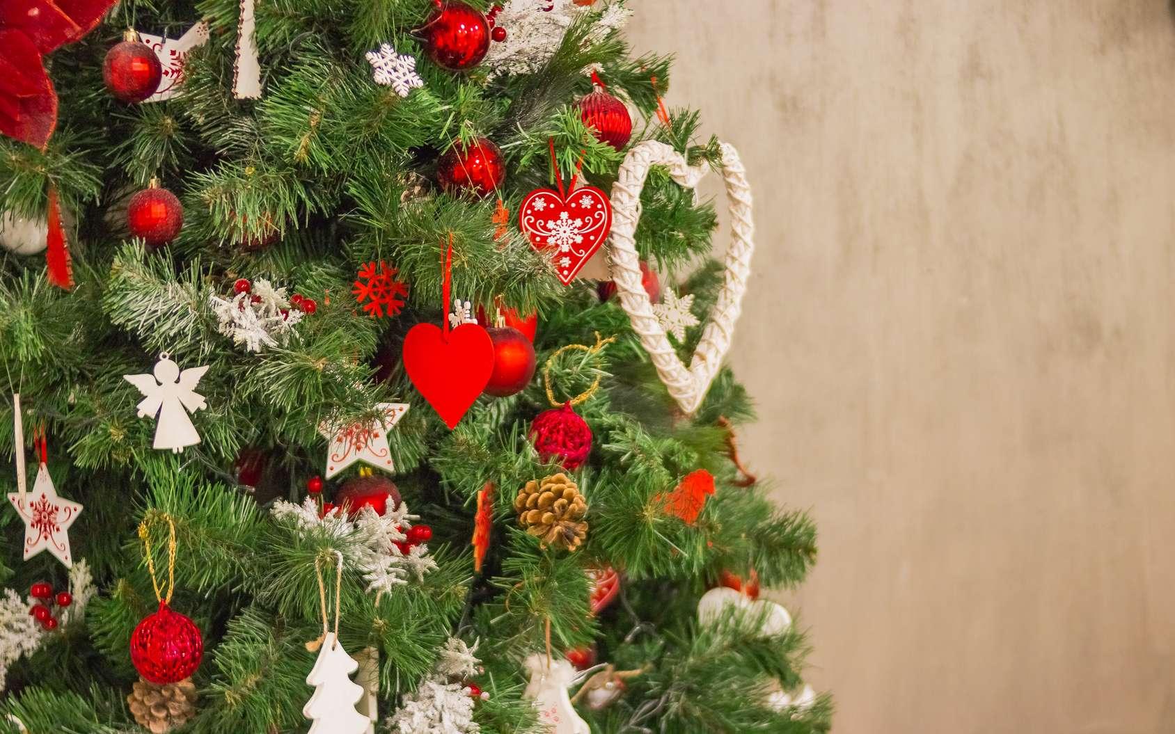 Sapin: bien le choisir pour un Noël écolo. © Yulia - Fotolia