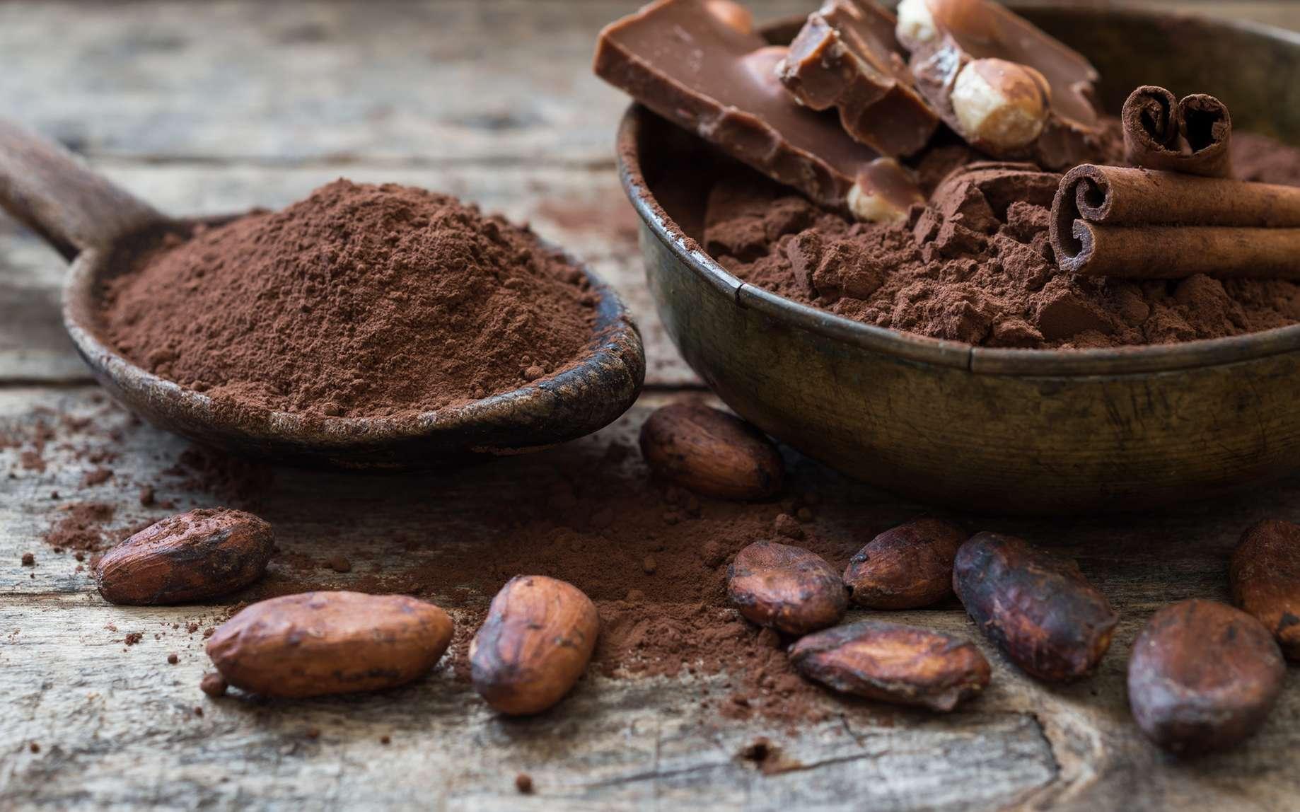 Quels sont les bienfaits du cacao ? © kerim, fotolia