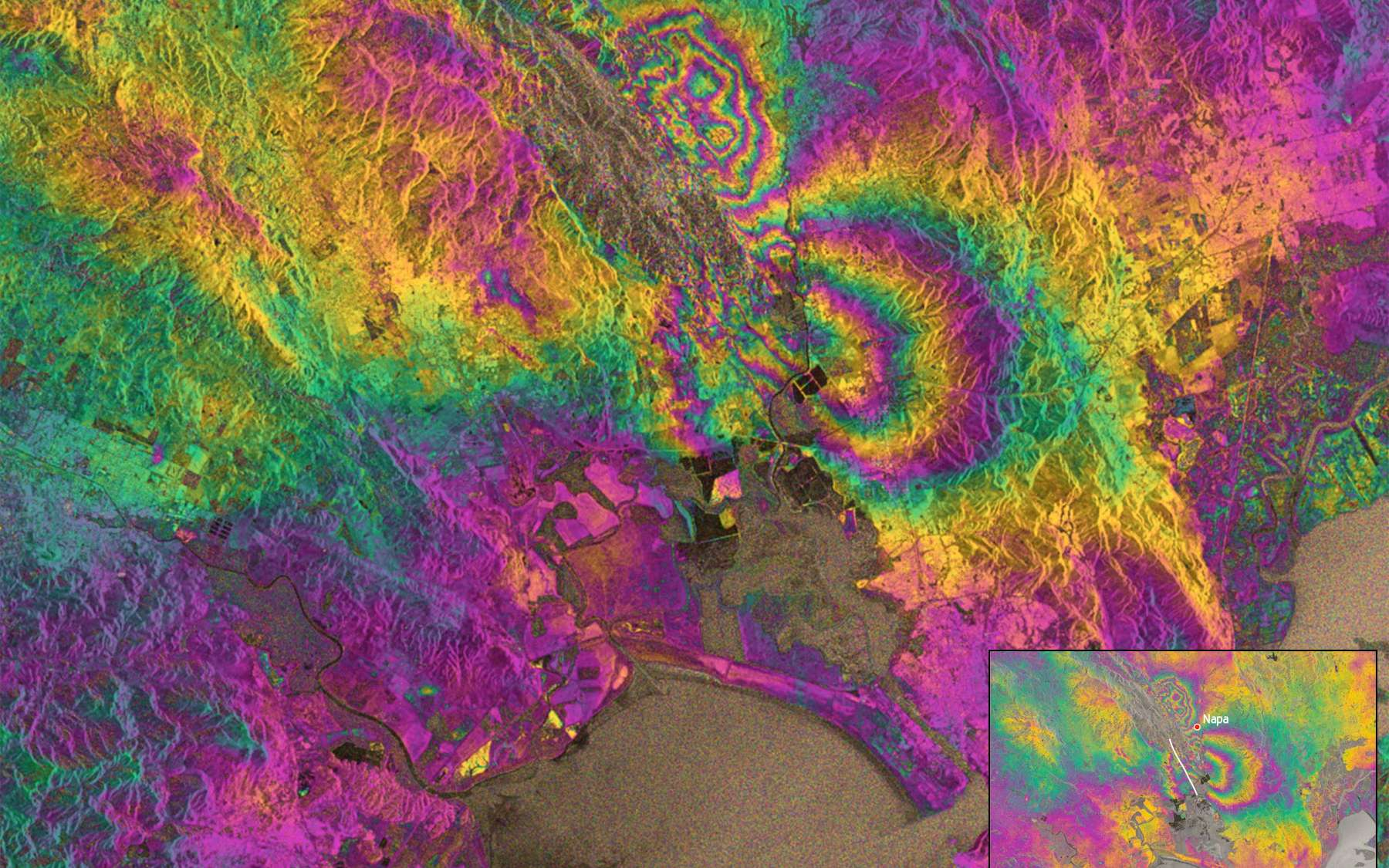 Interférogramme de la déformation du sol survenu après le tremblement de terre du 24 août à Napa Valley (Etats-Unis). Tracé en blanc, l'emplacement de la faille de Napa Occidentale à l'origine du séisme. © Copernicus data (2014), Esa, PPO.labs, Norut, Comet-SEOM Insarap study