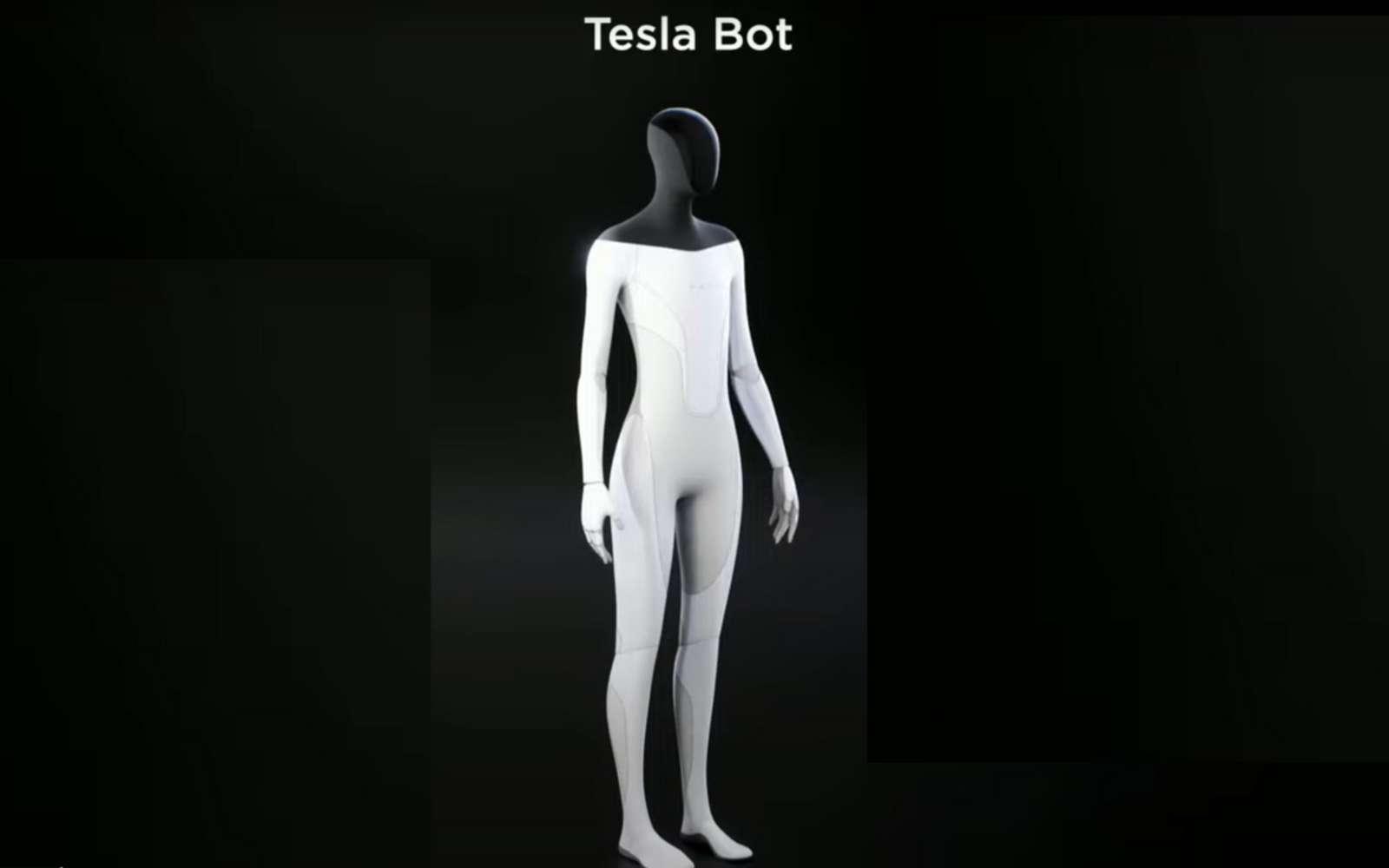 Le robot humanoïde ferait une taille moyenne humaine et pourrait transporter des charges de plus de vingt kilos. © Tesla