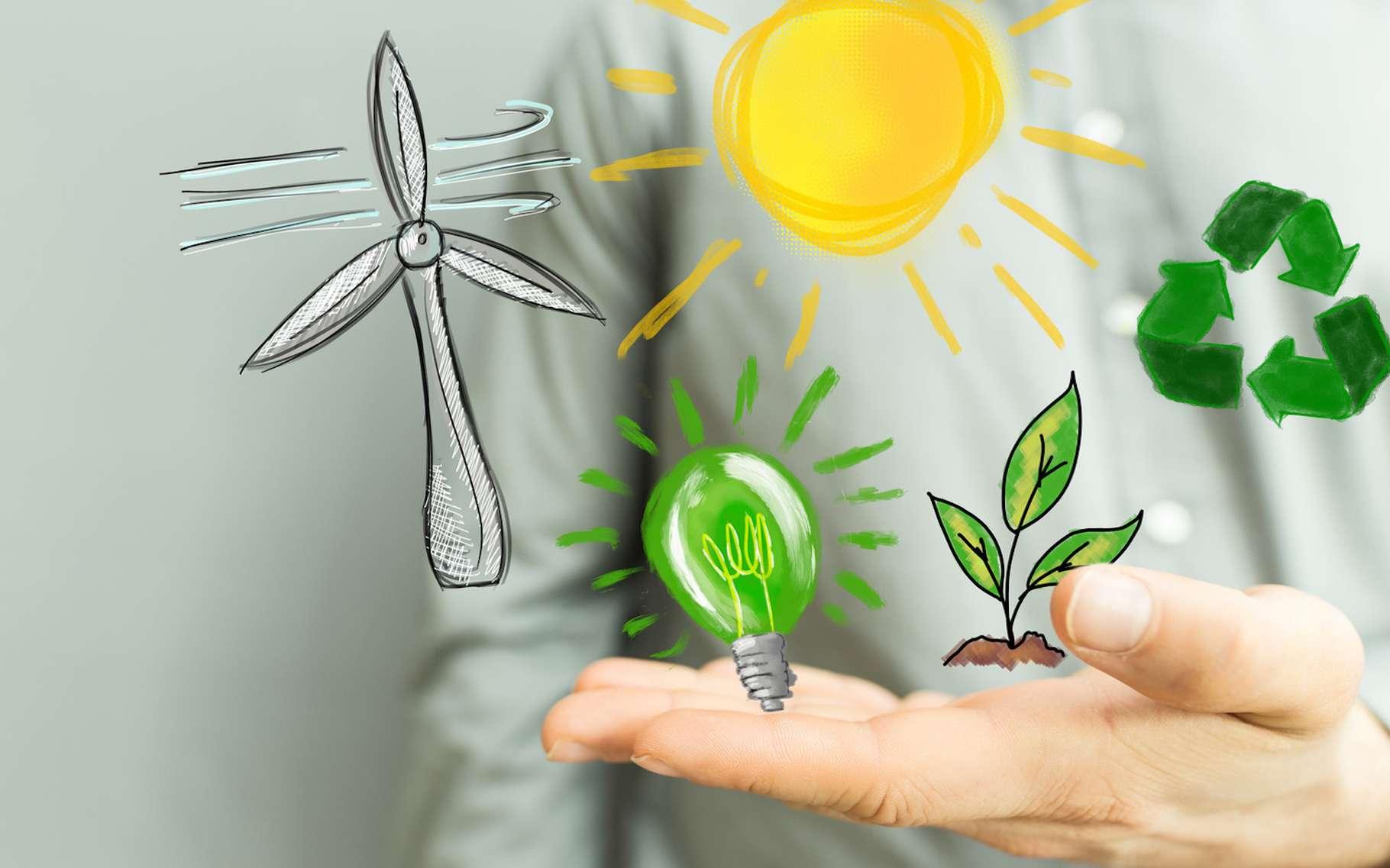 Si le gaz naturel ne peut pas être qualifié d'énergie verte, le biogaz, quant à lui, entre tout à fait dans cette catégorie. © vege, Fotolia