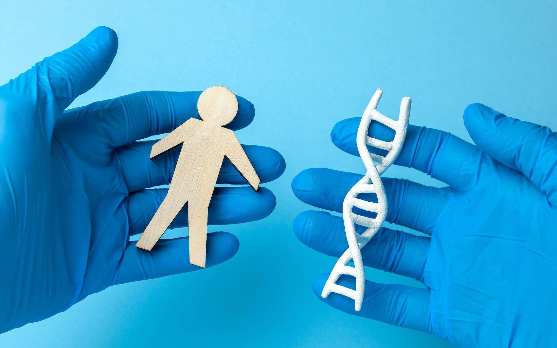 Une grande partie de notre patrimoine génétique provient d'anciennes espèces d'hominidés. © adragan, Adobe Stock