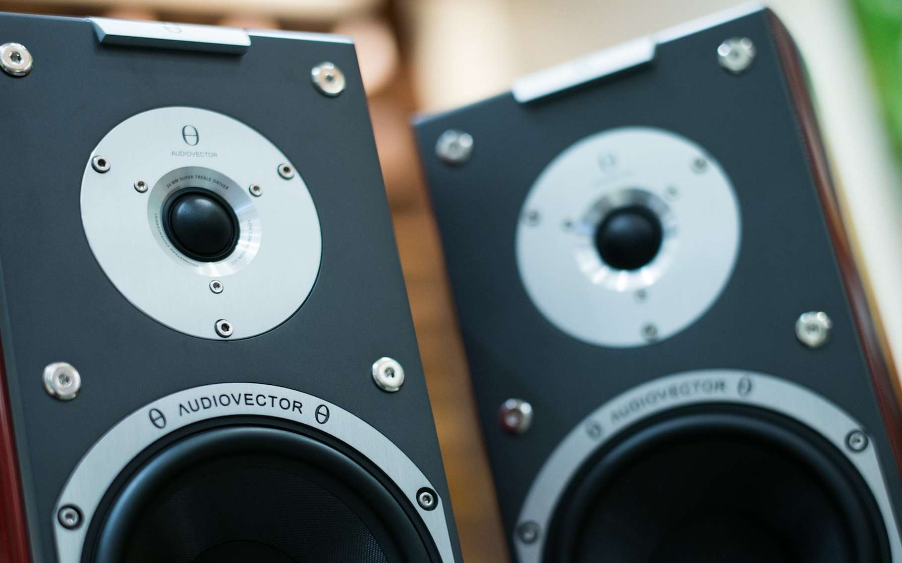 Les vibrations de la membrane d'un haut-parleur se transmettent à l'air pour propager les sons. © phamtu1509, Pixabay, DP