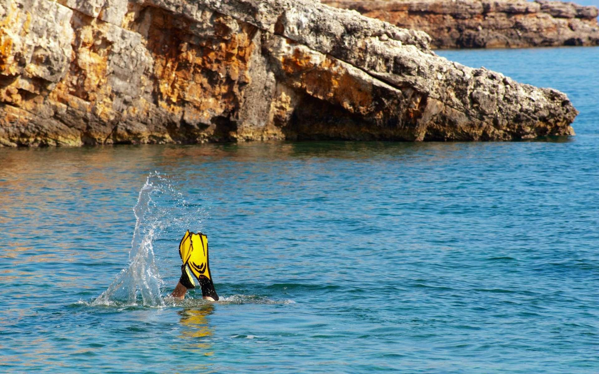 Les zones marines représentent 65 % de l'extension des zones de Natura 2000. © Demid
