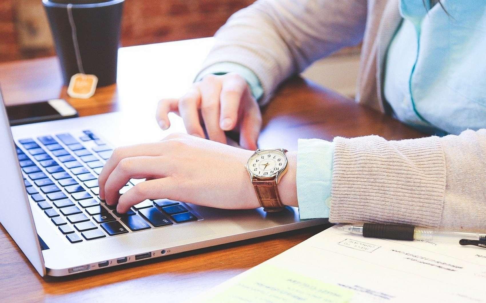 École informatique : quelle formation choisir ? © stevepb, Pixabay