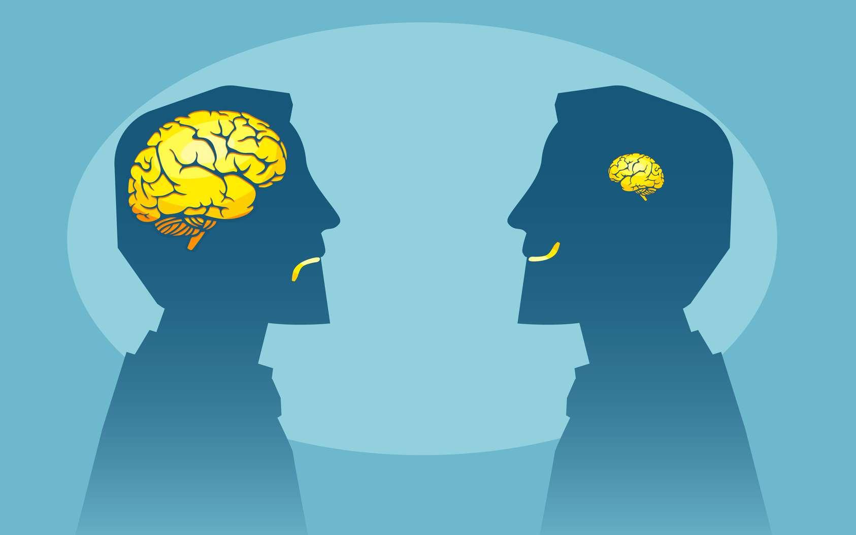 Plus que la taille, ce sont les connexions entre les neurones qui influent sur l'intelligence. © Feodora, Fotolia