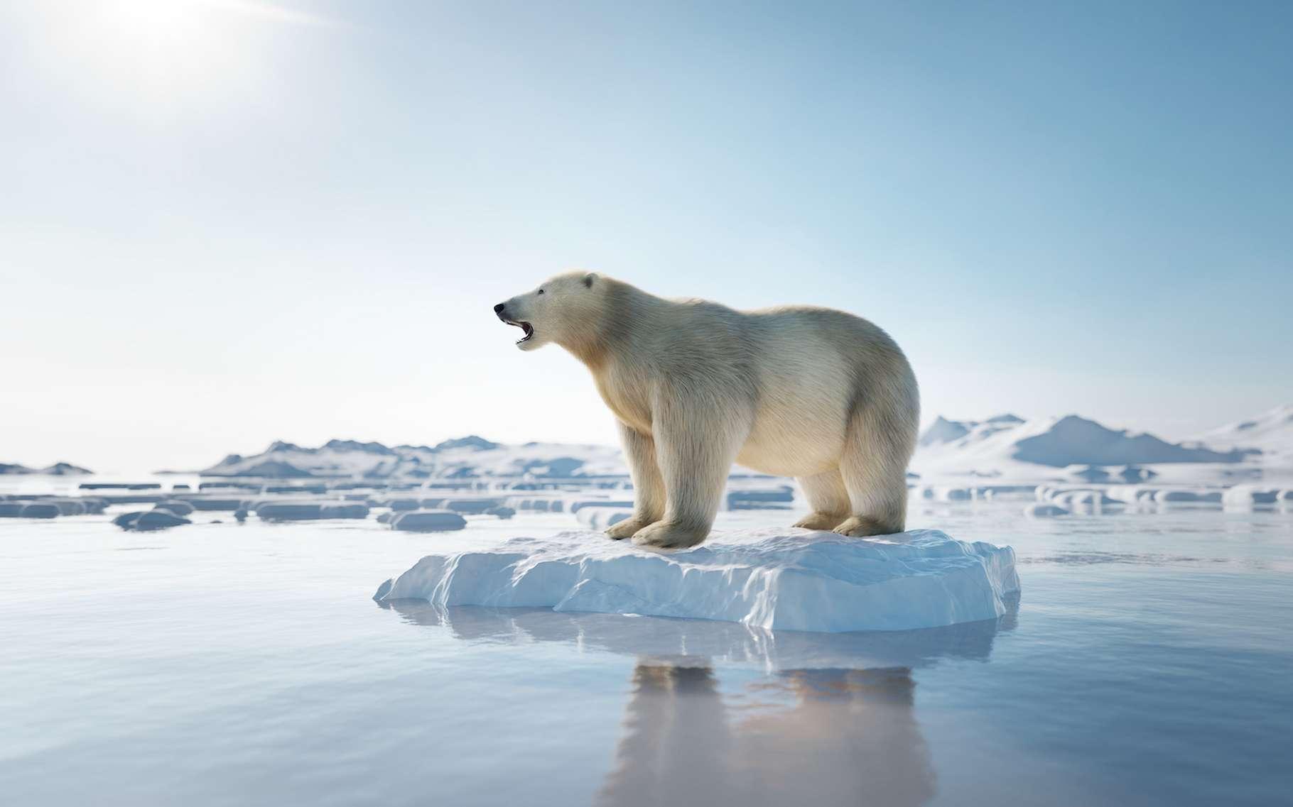 Sous l'effet du réchauffement climatique, la glace fond de plus en plus vite. © Photocreo Bednek, Adobe Stock