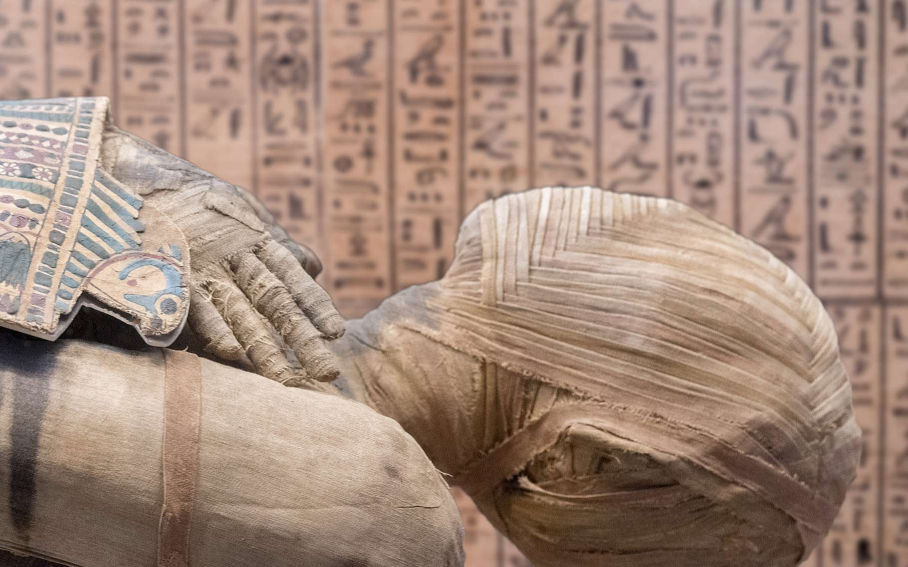 Les momies égyptiennes n'en finissent pas de révéler leurs secrets ! © Andrea Izzotti, Shutterstock