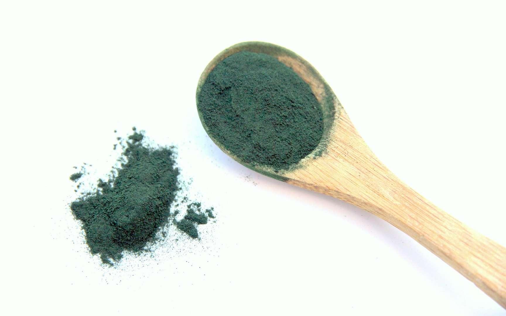 La spiruline est un complément alimentaire qui peut se présenter sous forme de poudre. © Nouchkac, Pixabay