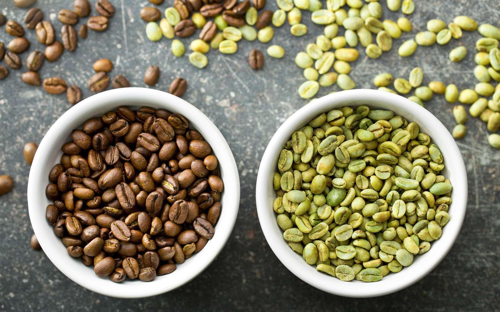 La graine de café est verte et noircit à mesure qu'elle est torréfiée. Il existe plusieurs niveaux de torréfaction, de blond à italien (noir) en passant par brun ou français (mi-noir). Le café vert présenterait plus d'atouts nutritionnels que le café noir. © Jiri Hera, Fotolia