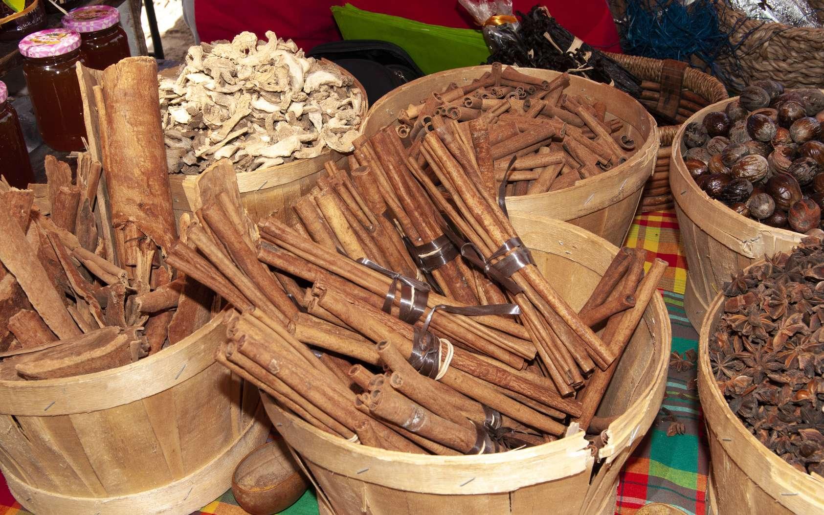 La cannelle, en raison de sa propriété coupe-faim, est souvent recommandée par les nutritionnistes : respirer l'odeur de bâtons de cannelle permettrait de stopper les envie de sucre. ©AlcelVision, Fotolia