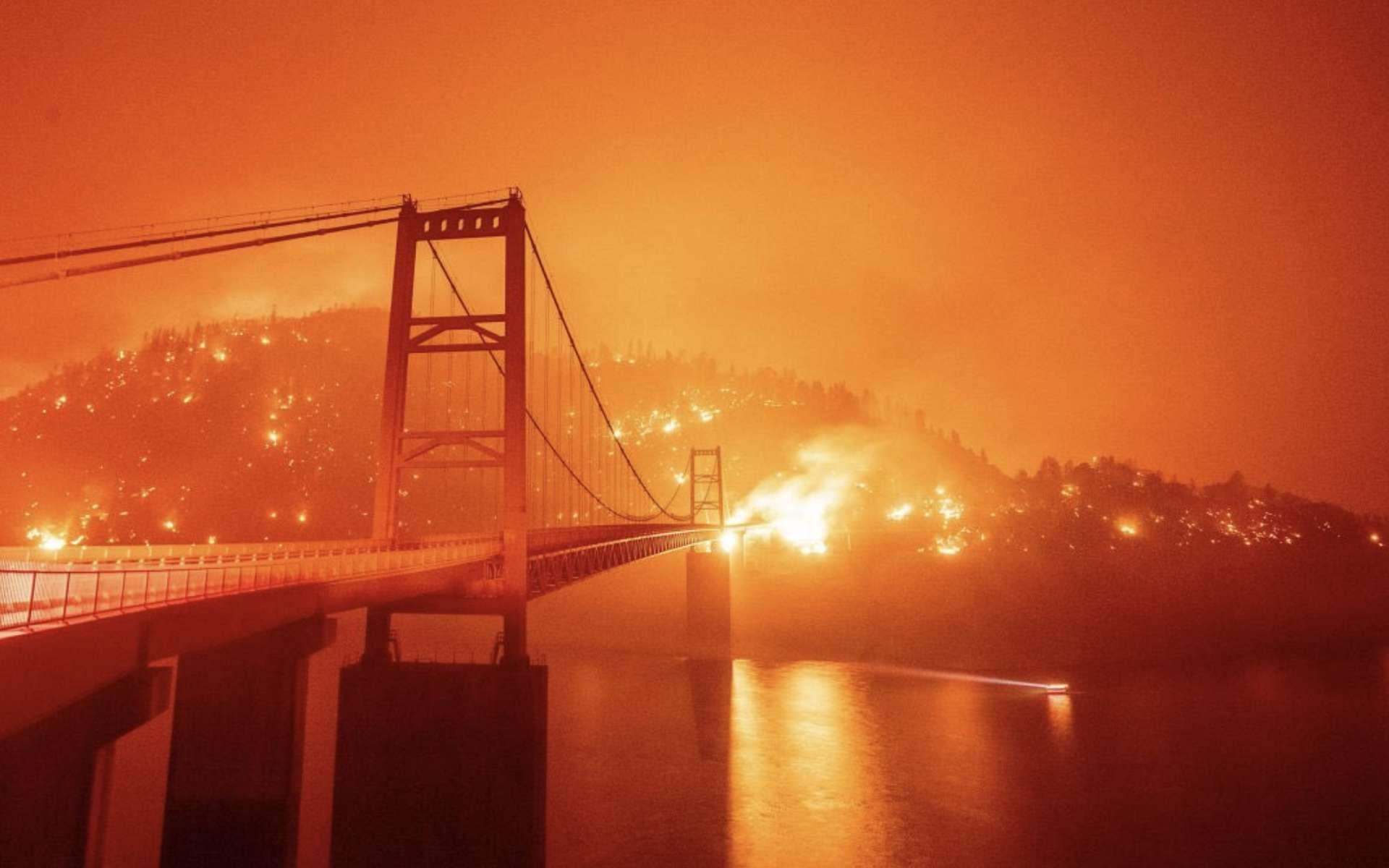 L'ouest des États-Unis est en proie à des feux de forêt qui semblent, ce jeudi 10 septembre 2020, hors de contrôle. © Tommy Mustache, Twitter