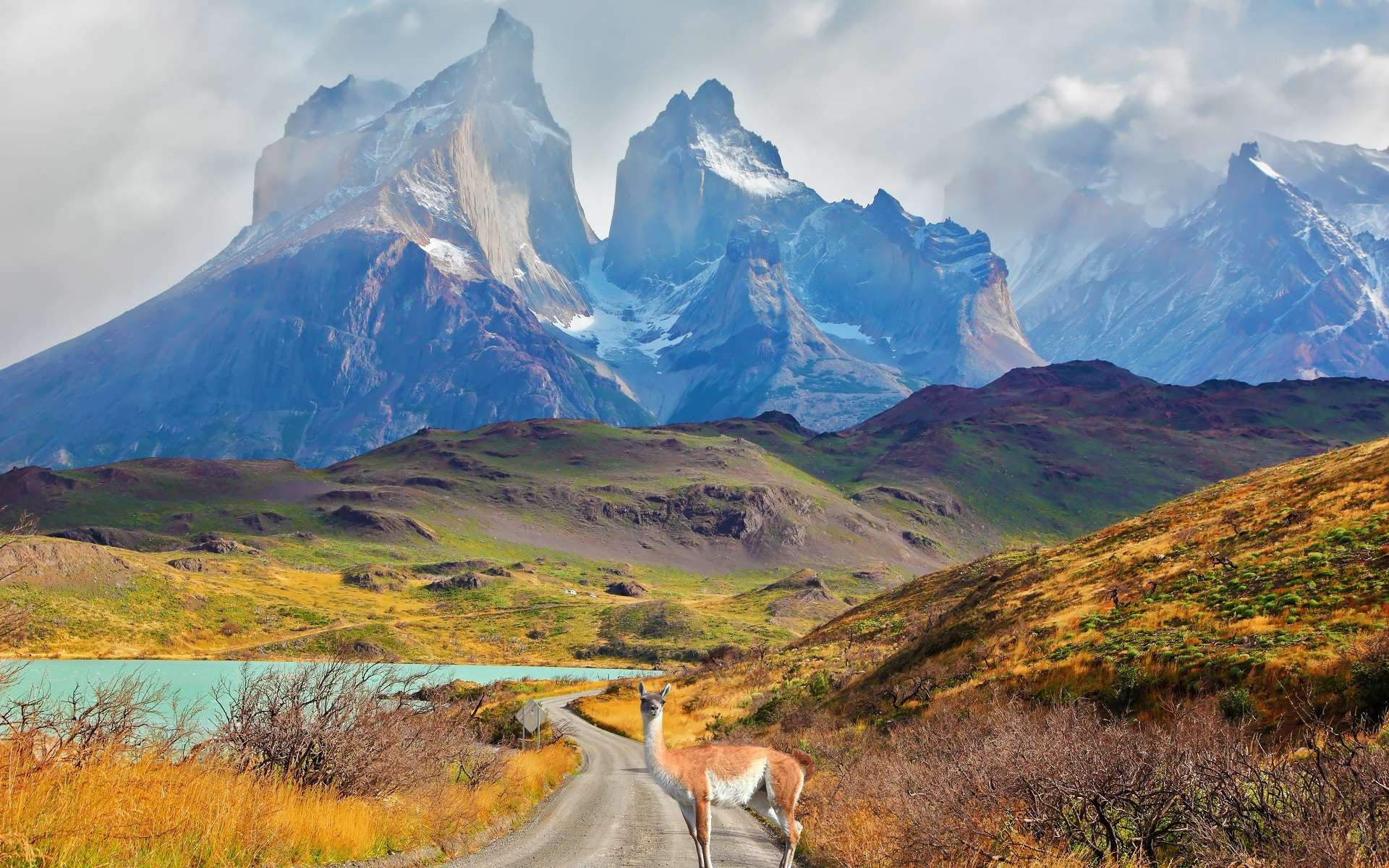 Les pics de Los Kuernons, au-dessus du lac Pehoé, au sud du Chili. Dans cette étude, les personnes vivant le plus au sud du Chili, les plus éloignées de l'équateur, semblaient plus enclines à l'hypertension. © kavram, Shutterstock