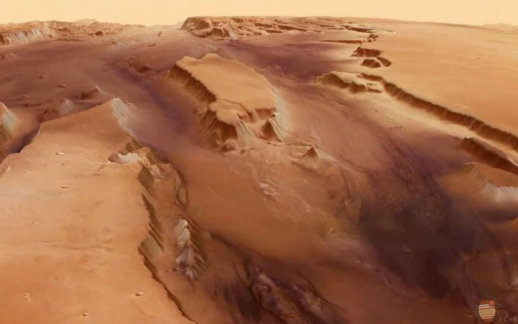 Kasei Valles est un vaste système de canyons. On voit ici une vallée se partager en deux bras. © Esa, université libre de Berlin (groupe de sciences planétaires et de télédétection), DLR