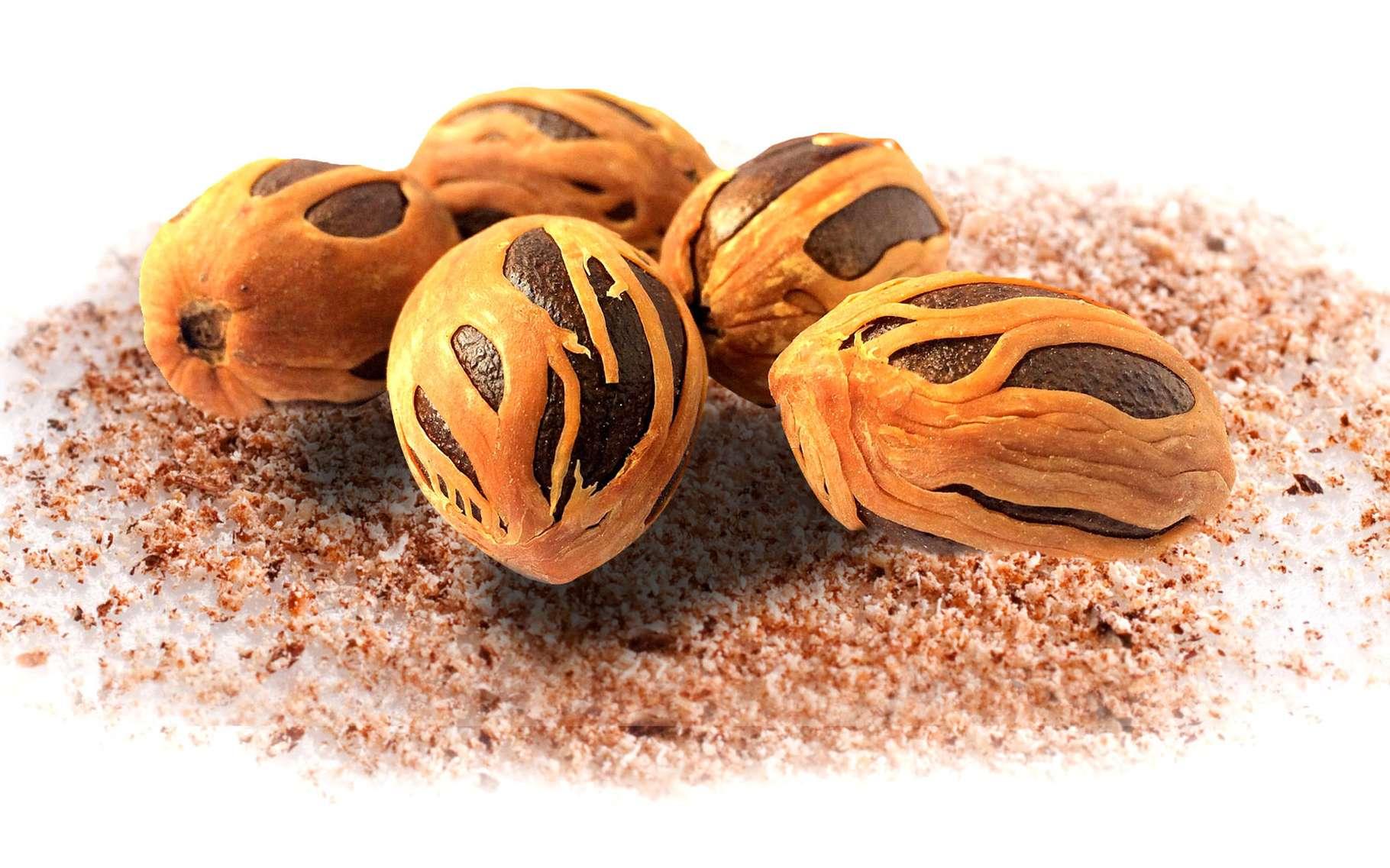 Pourquoi la noix de muscade peut être hallucinogène ? © Pixabay, DP