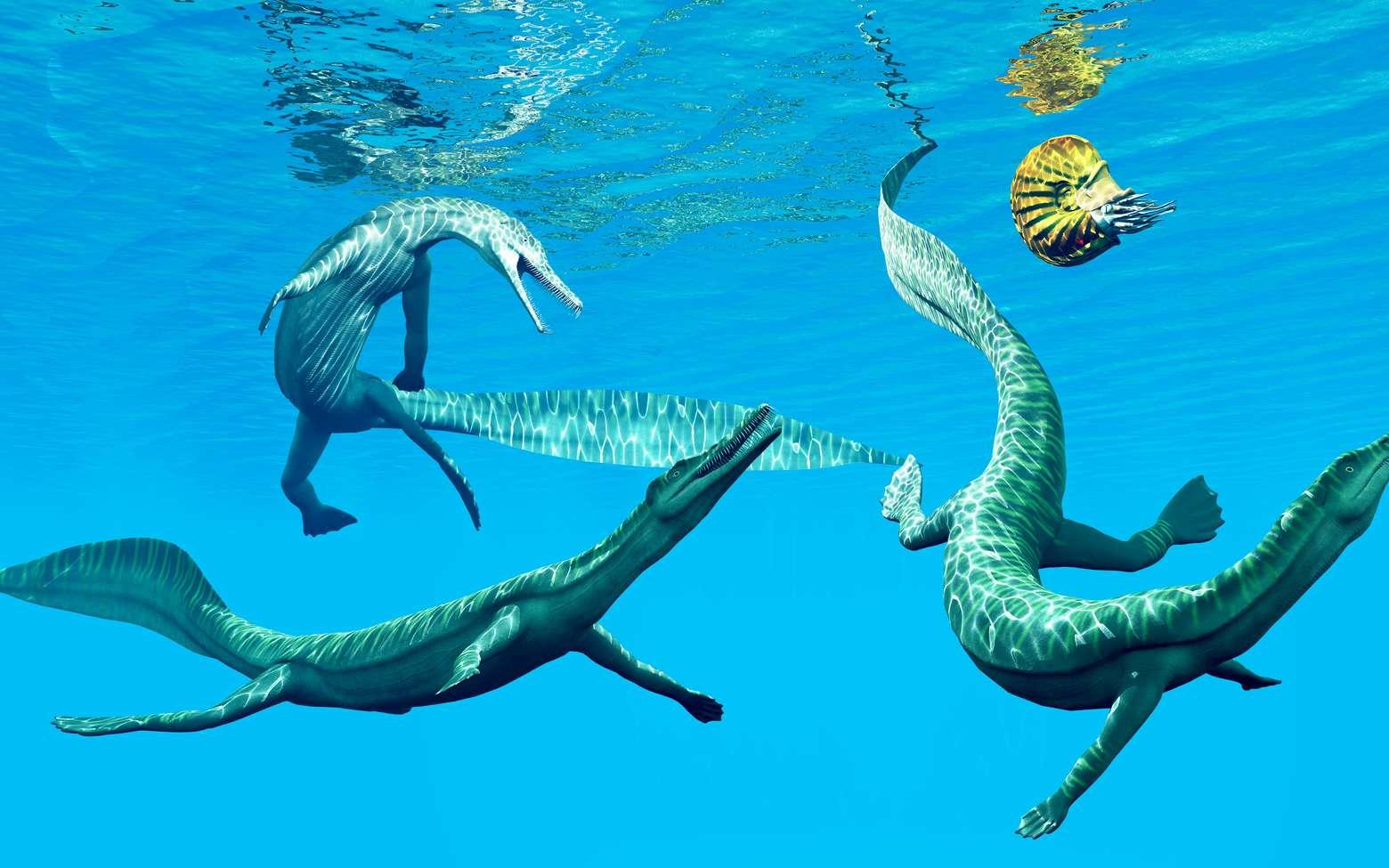 Des mésosaures au Permien, des reptiles marins avec une ammonite. © Catmando, Fotolia